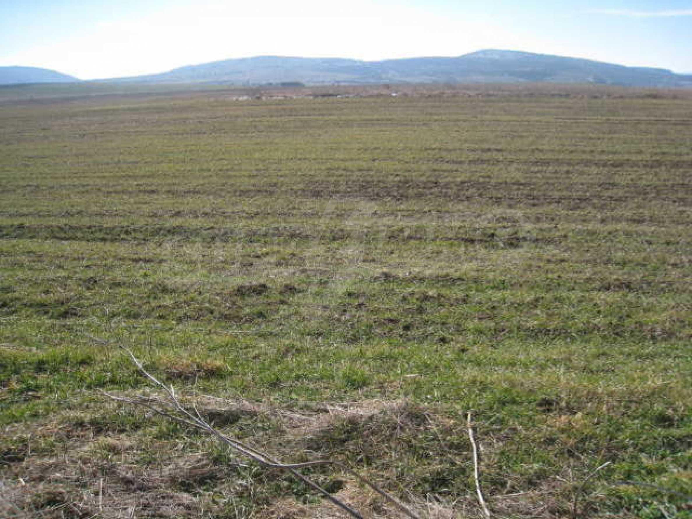 Хороший участок сельскохозяйственной земли 6