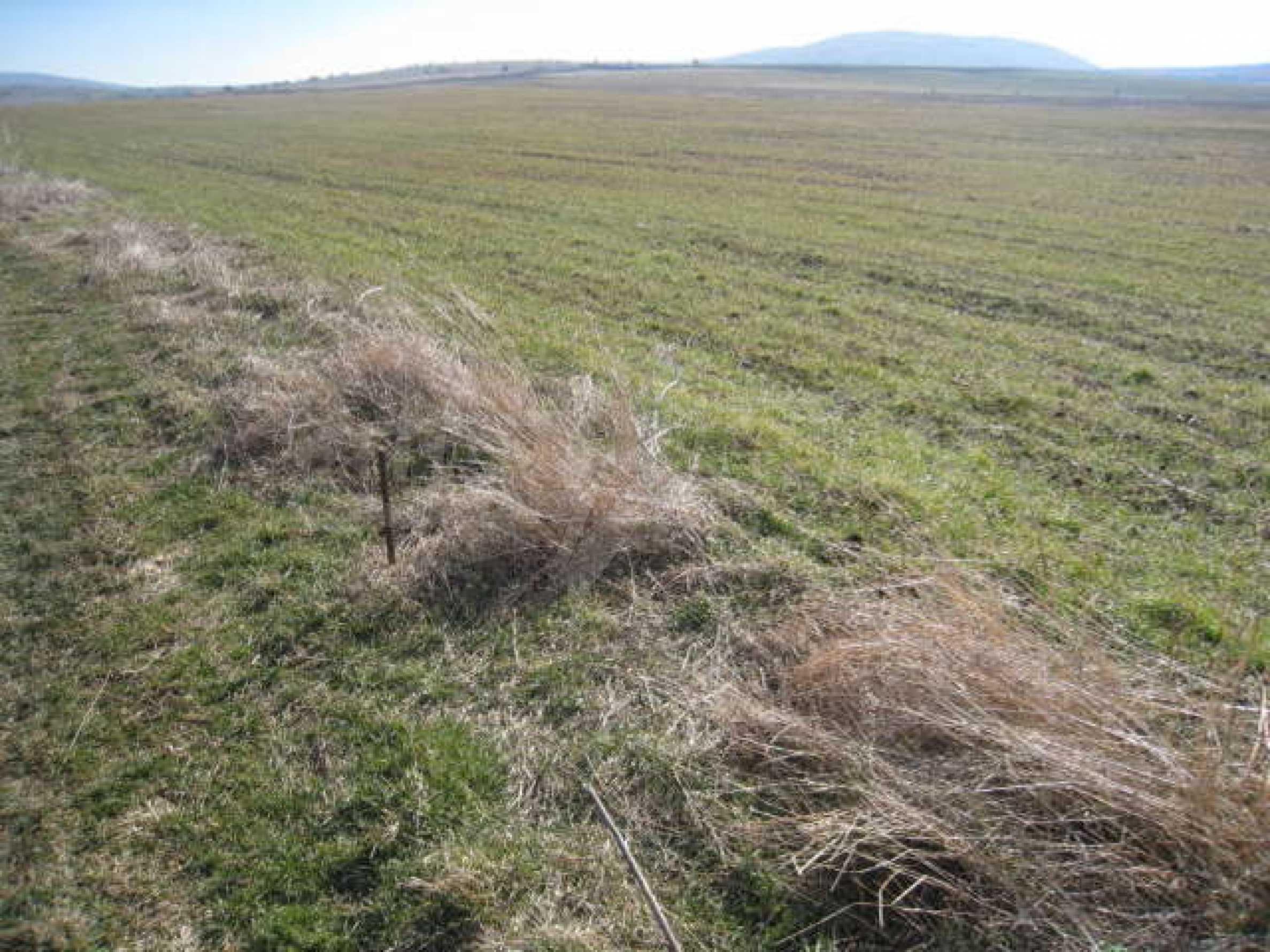 Хороший участок сельскохозяйственной земли 7