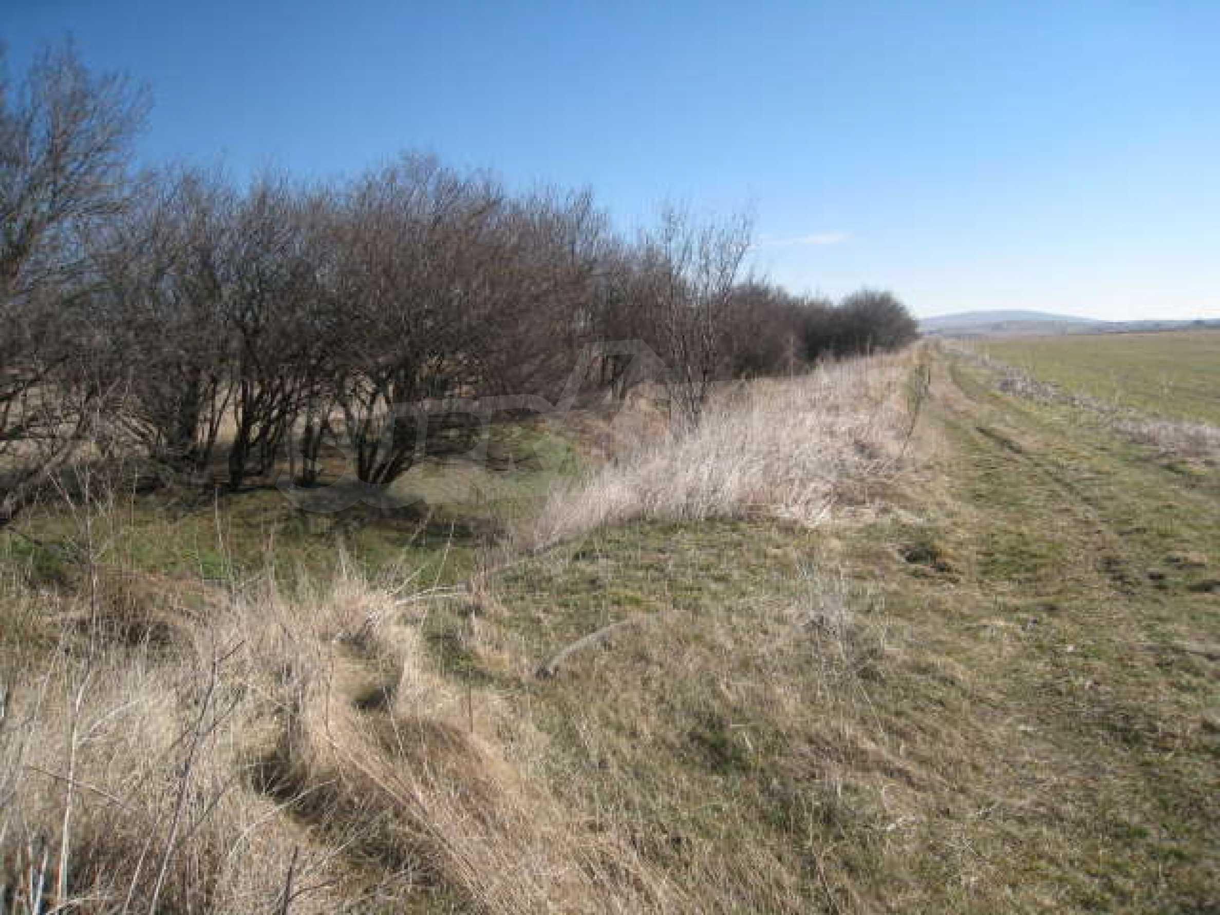 Хороший участок сельскохозяйственной земли 9