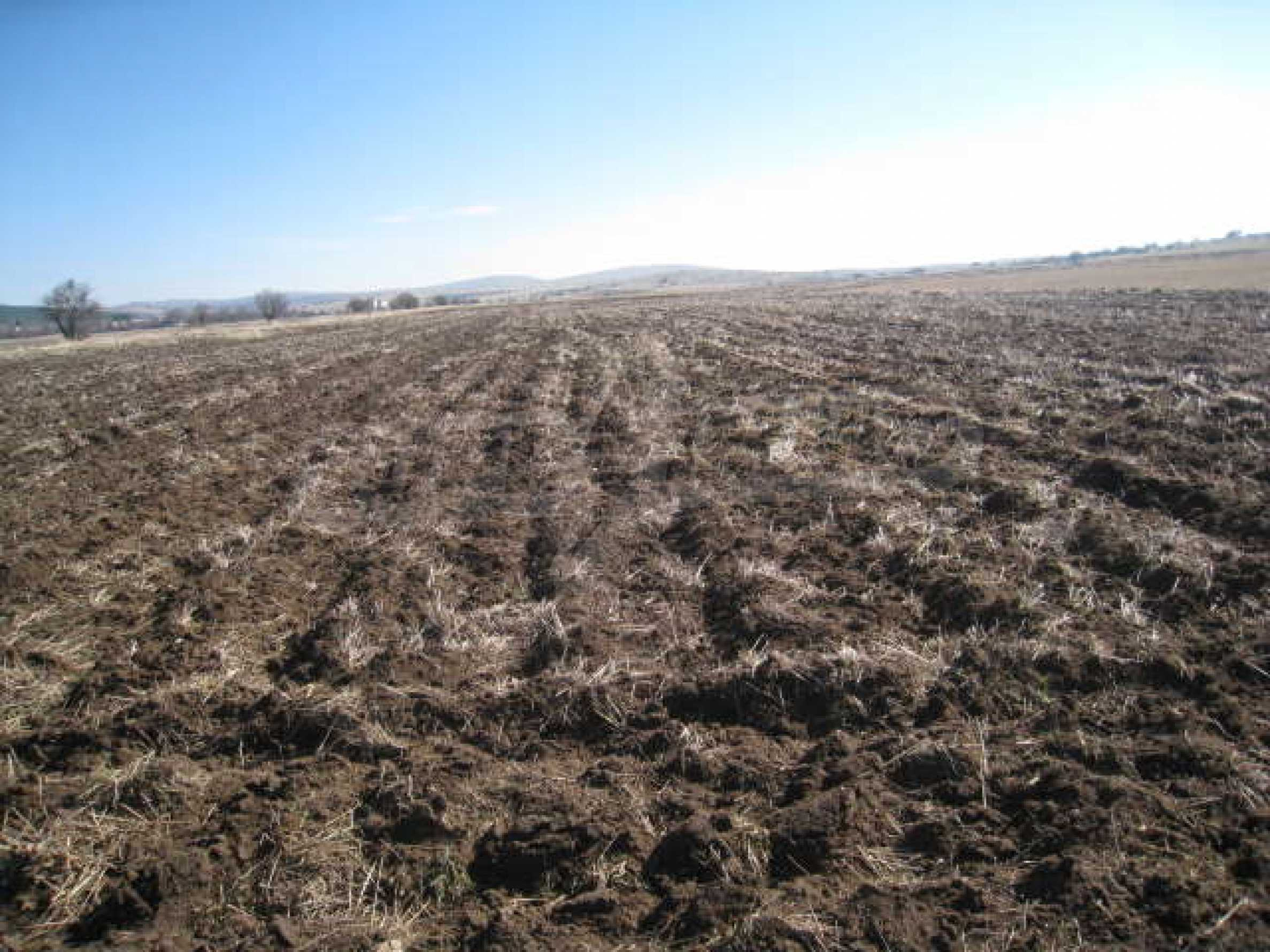 Large plot of agricultural land 1