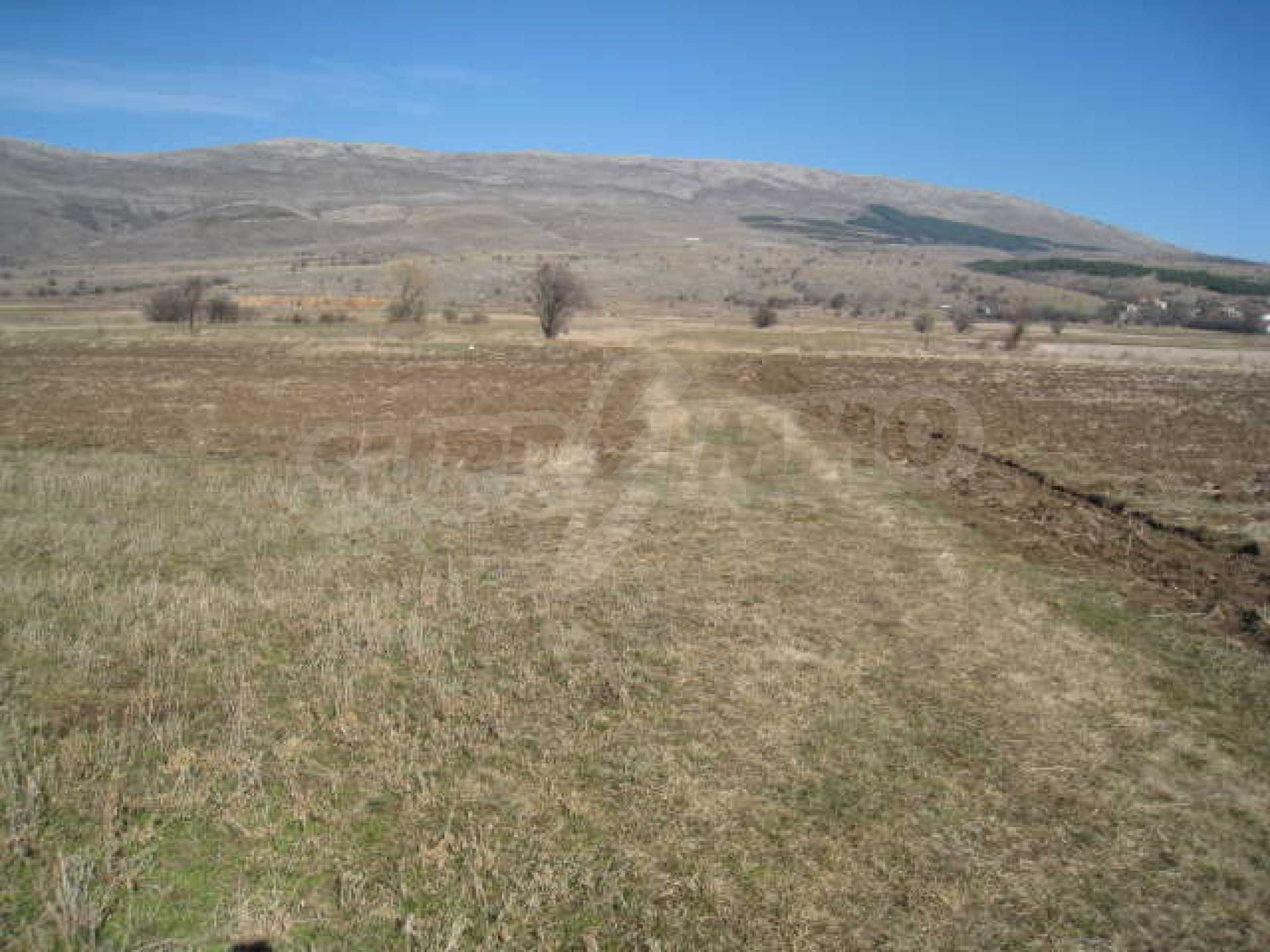 Large plot of agricultural land 7