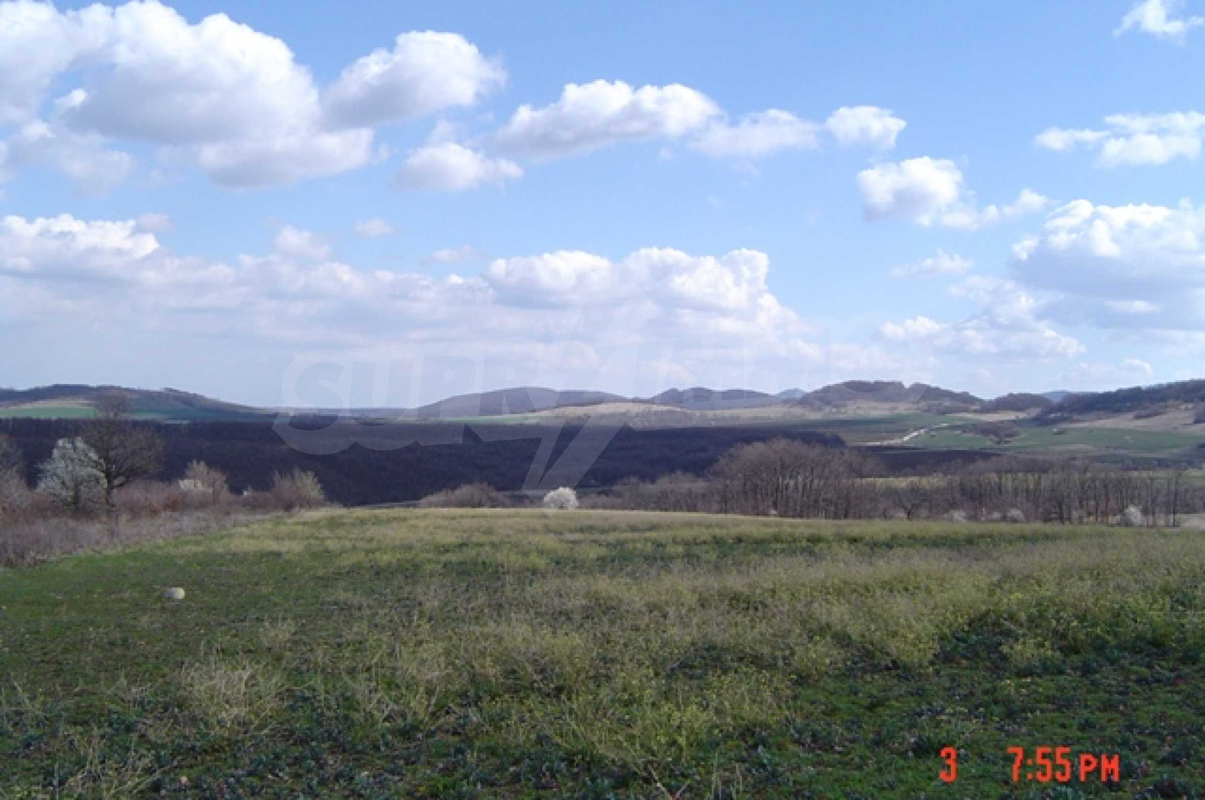 "Extensive plot of 12 dcr close to dam ""Tsonevo""  1"