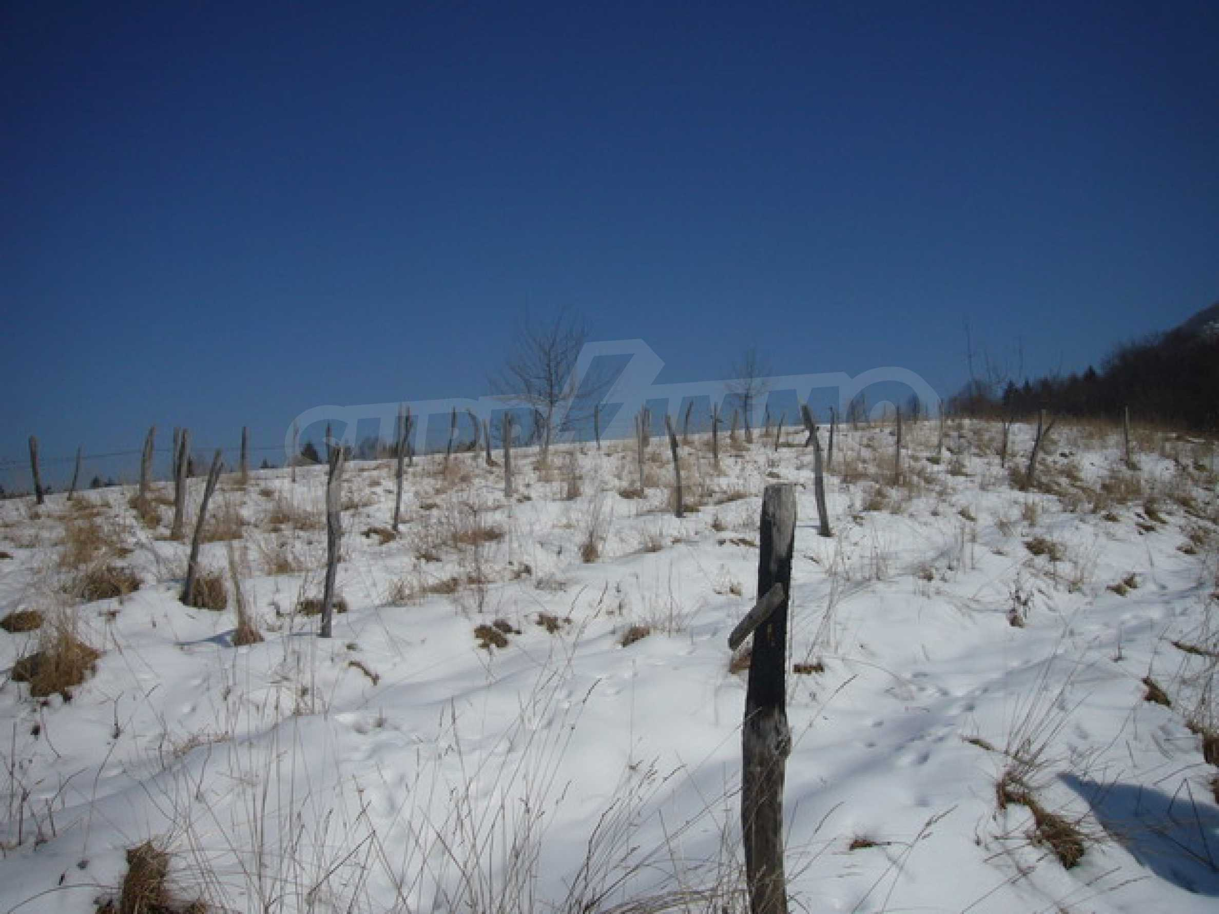 Plot of land with great potential  6