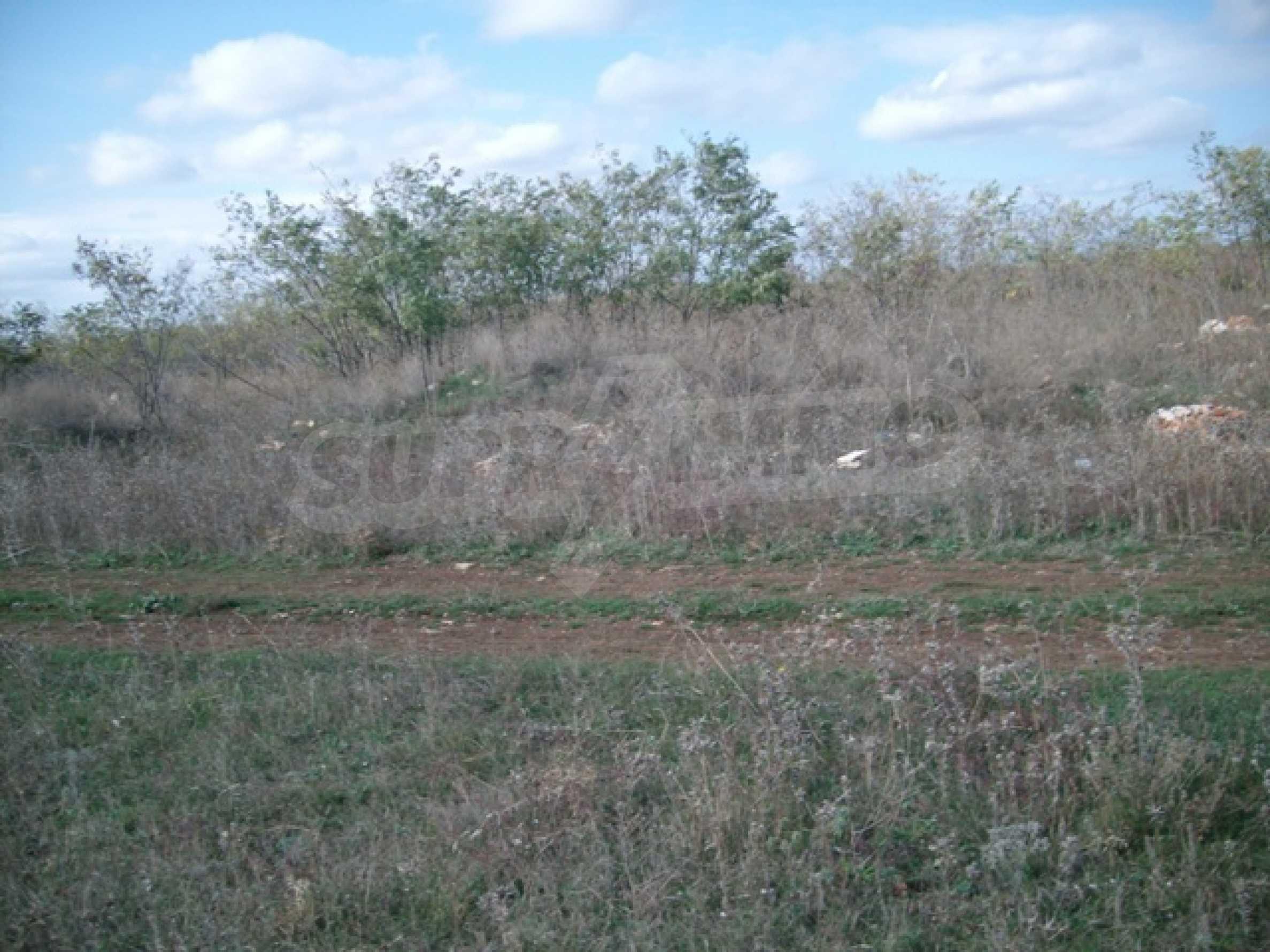 Участок земли под застройку, село Топола 1