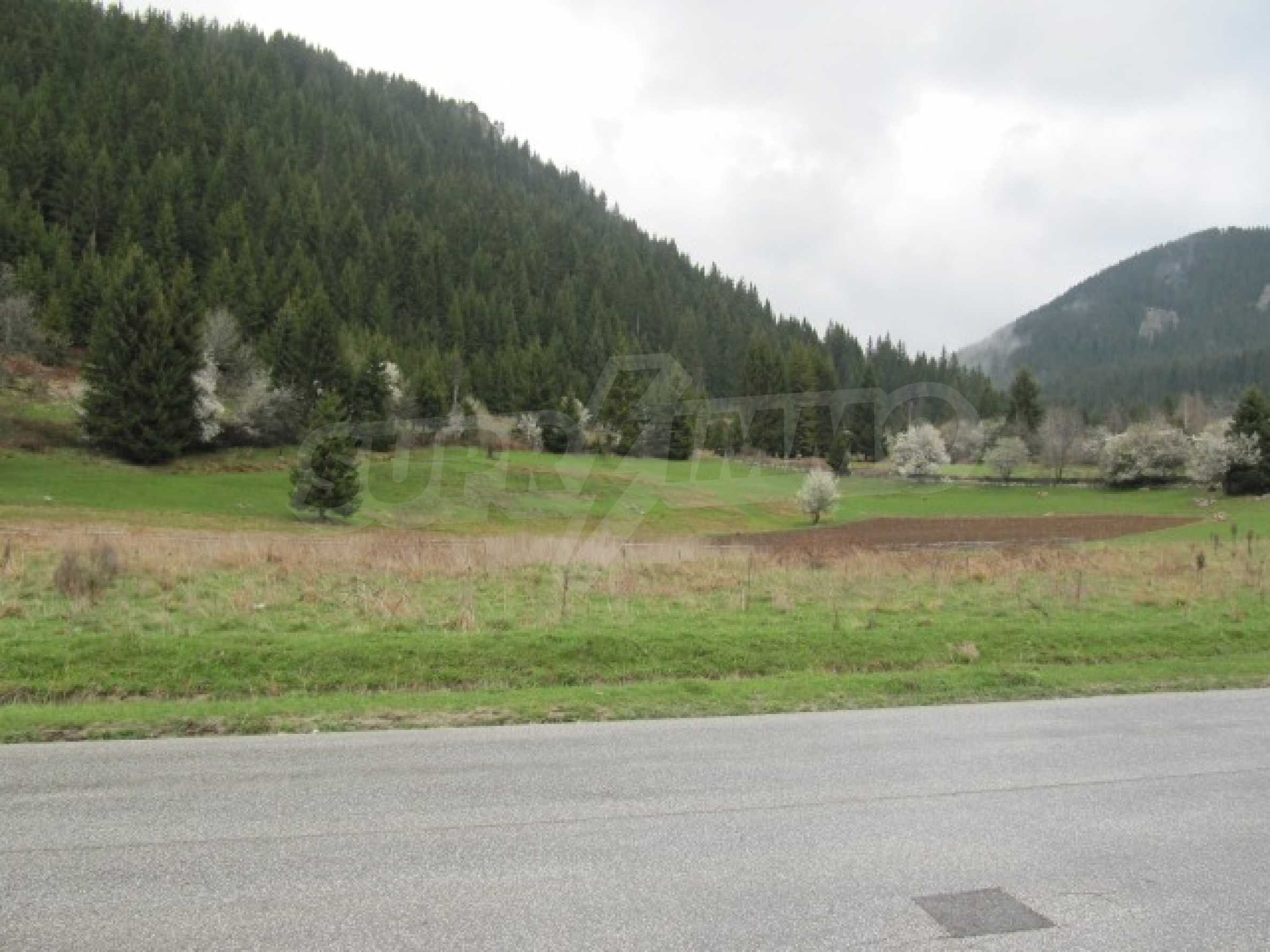 Huge plot of regulated land in Smolyan, 10 km away from Pamporovo 1