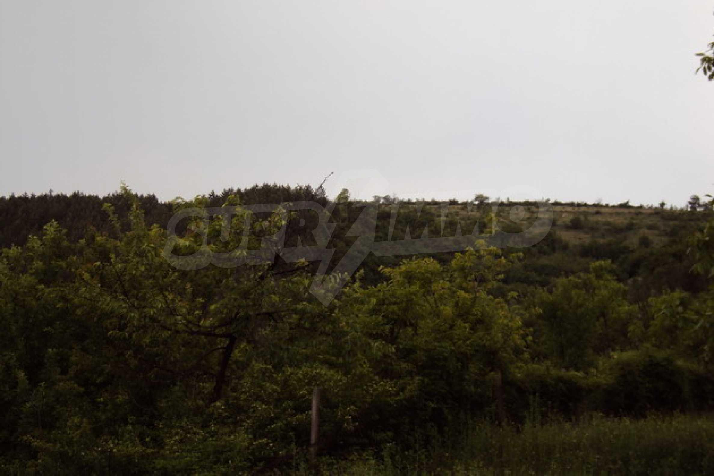 Geregeltes Grundstück in der Stadt Debelets 5