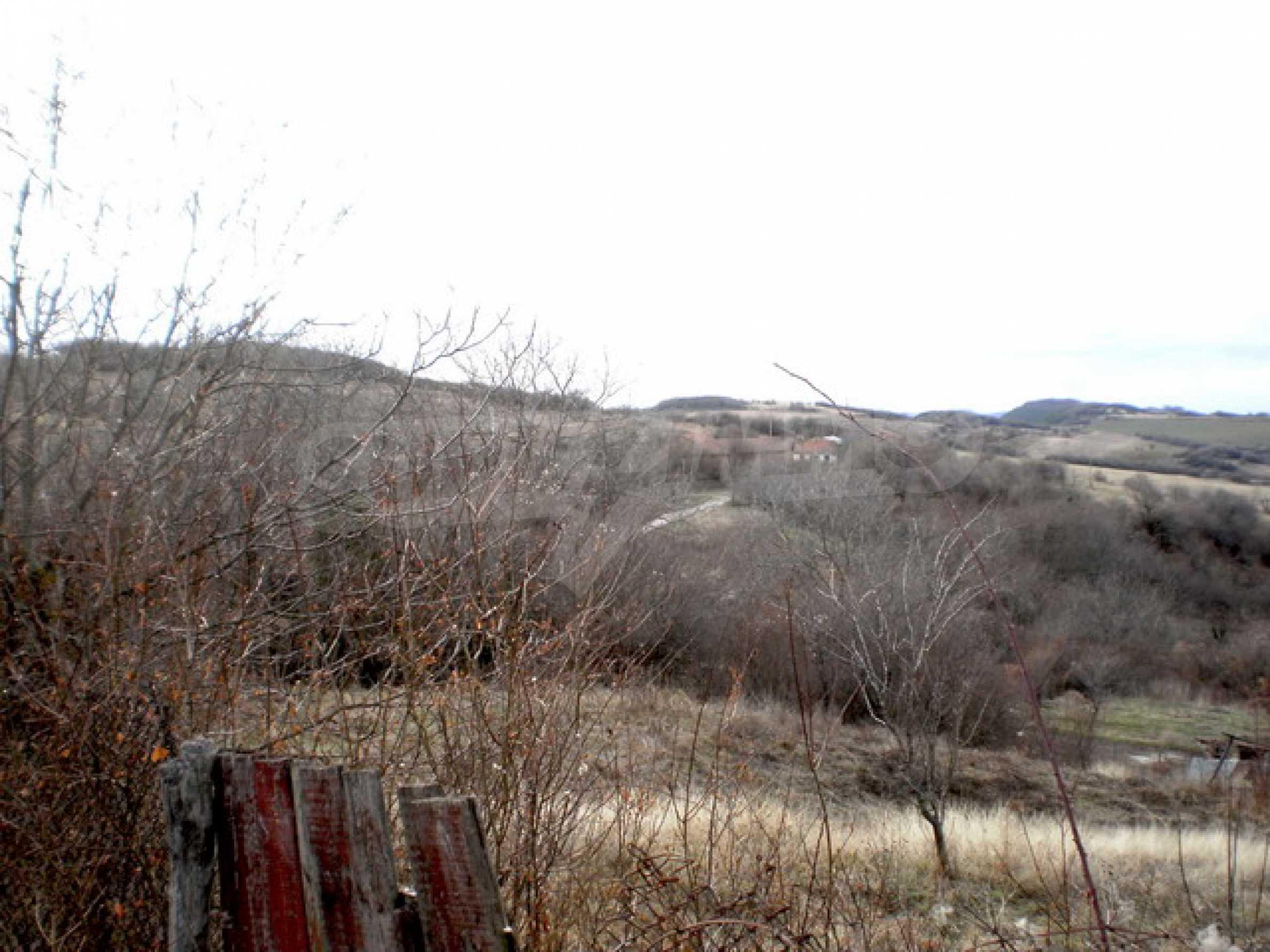 Земельный участок в деревне 2