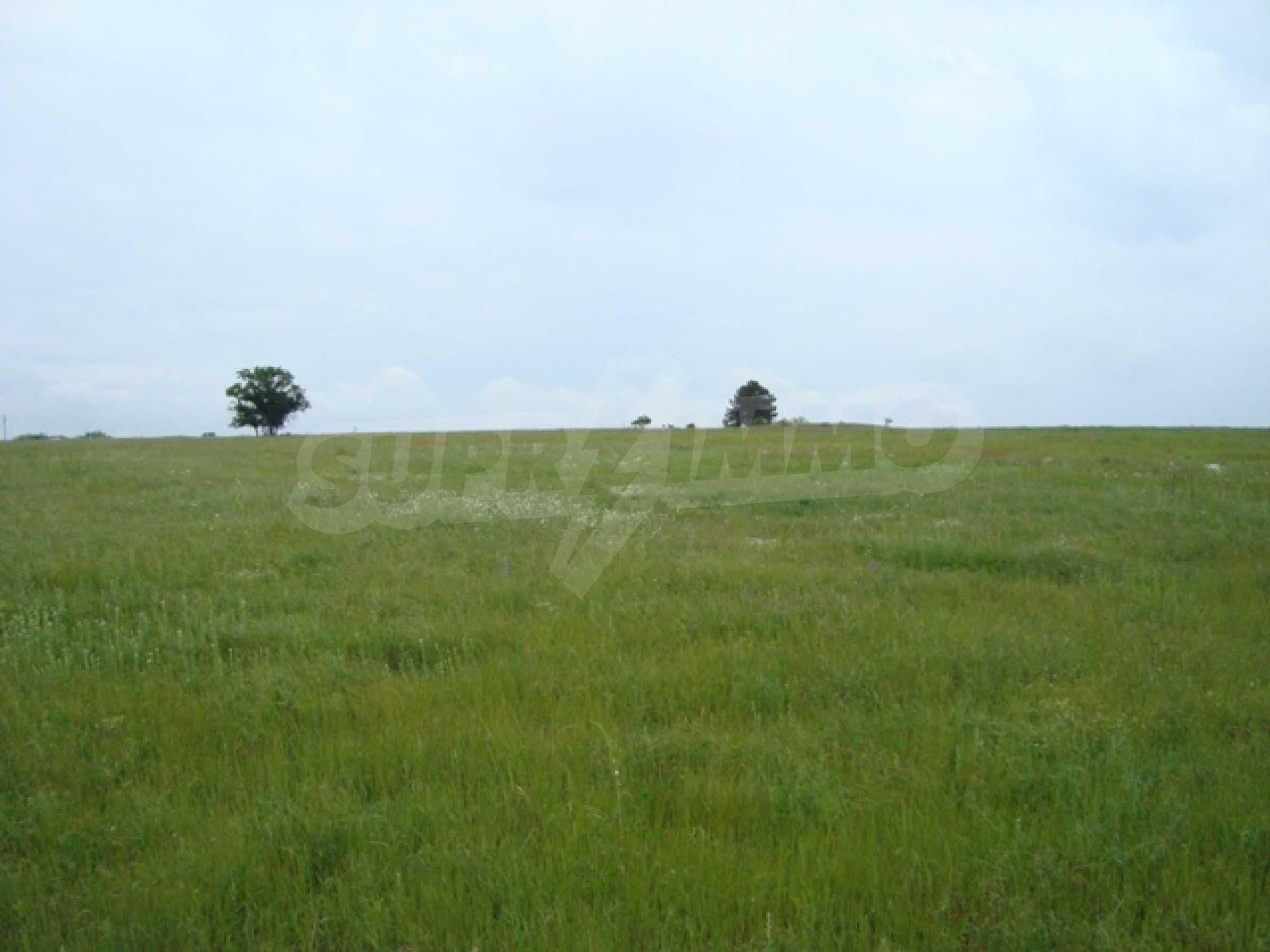 Продается большой участок земли возле озера Камчия 2