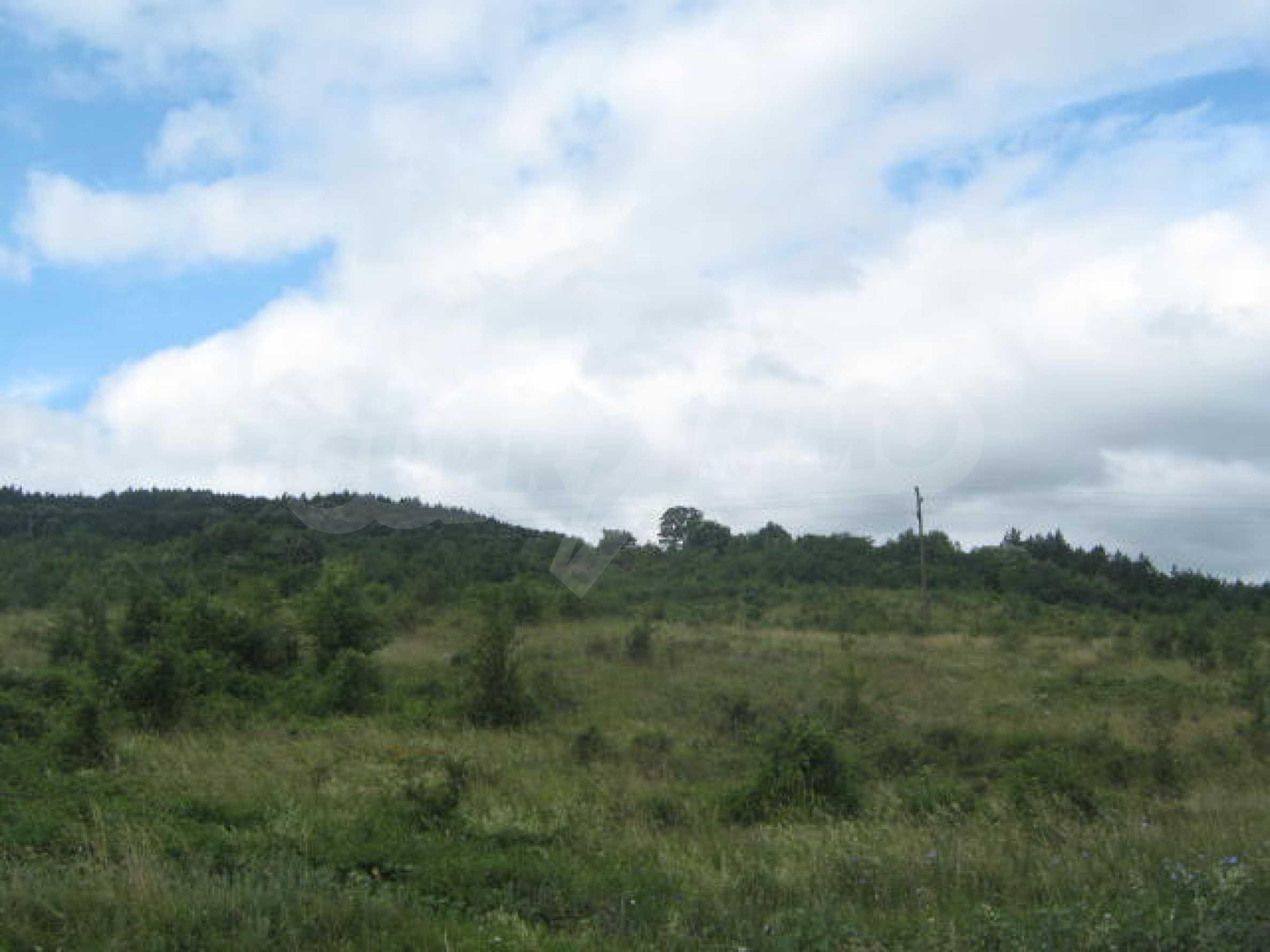 Сельскохозяйственная земля недалеко от города Видин 1