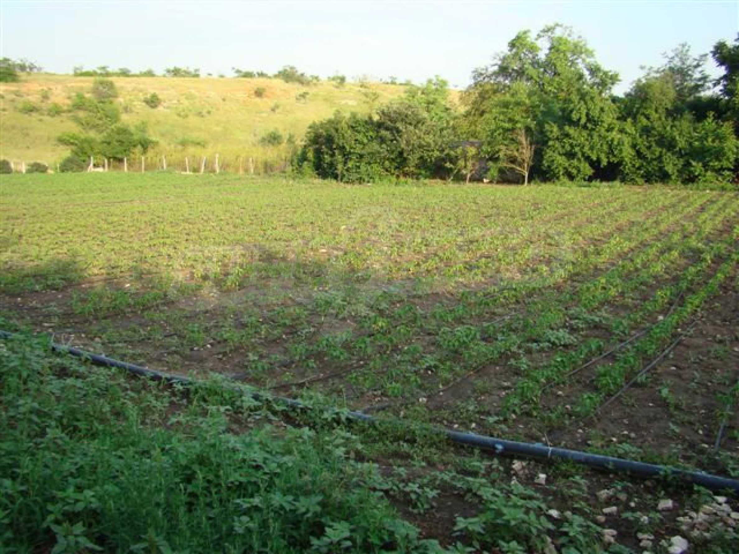 A farm house near Kavarna 16