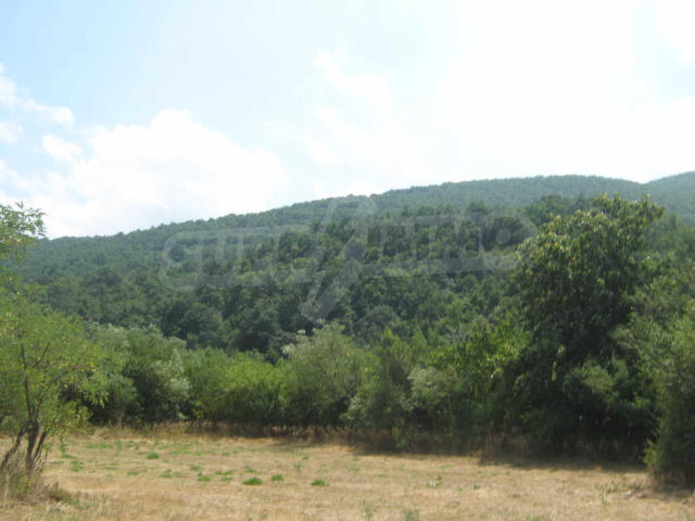 Участок земли в красивом селе 2