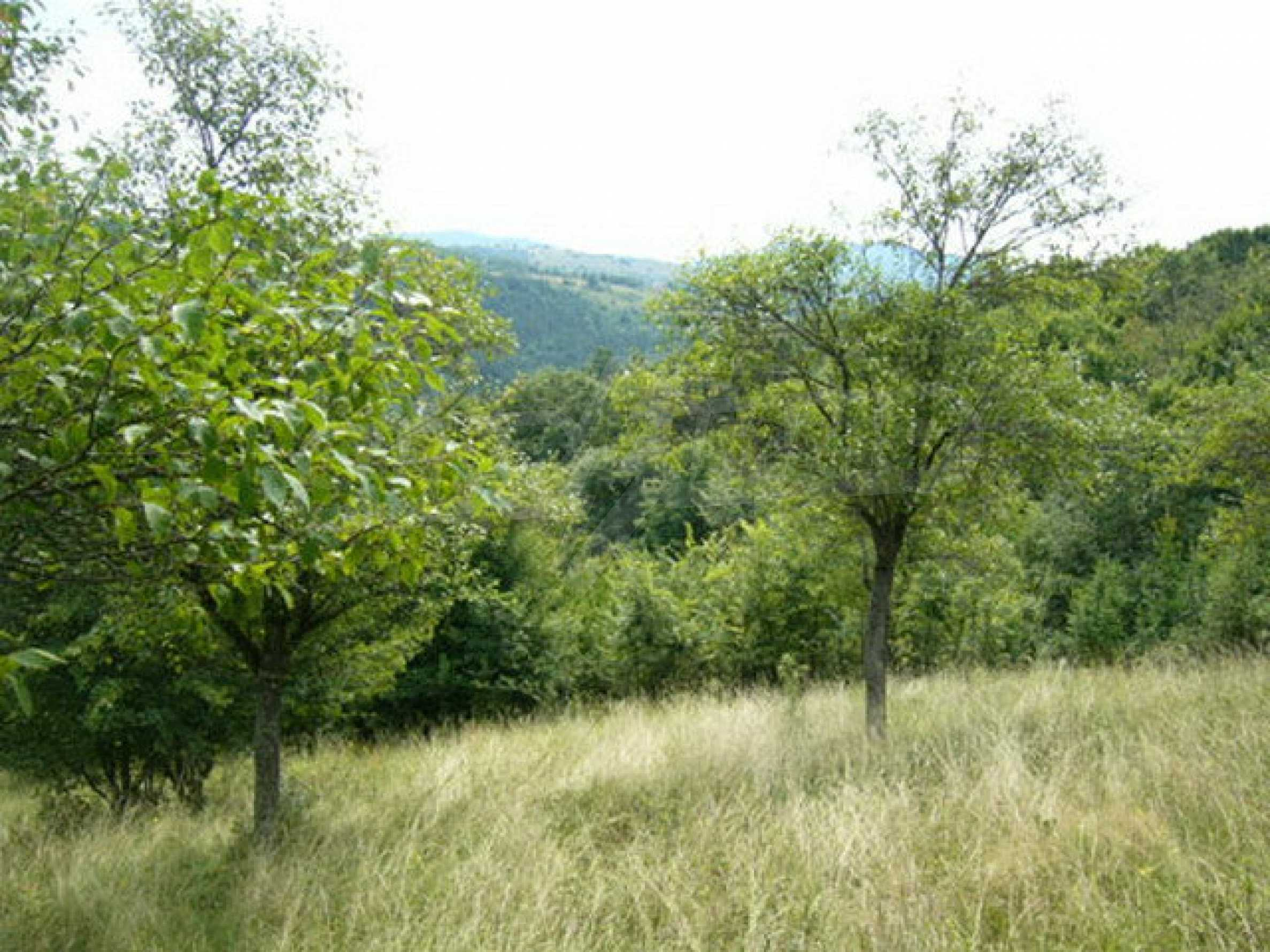 Reguliertes Anwesen in einem Dorf, das mit seinen Mineralquellen beliebt ist 5