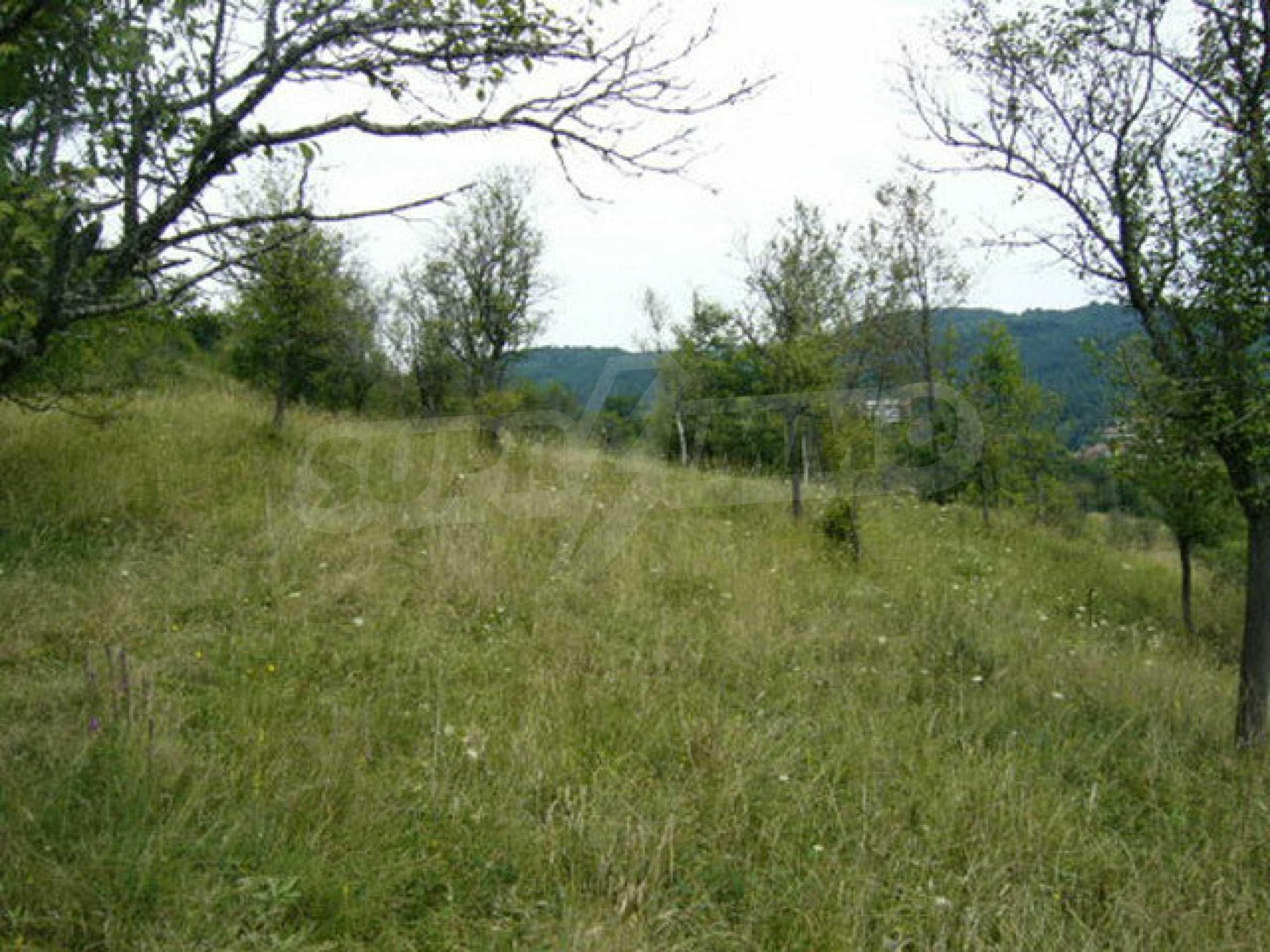 Reguliertes Anwesen in einem Dorf, das mit seinen Mineralquellen beliebt ist 6