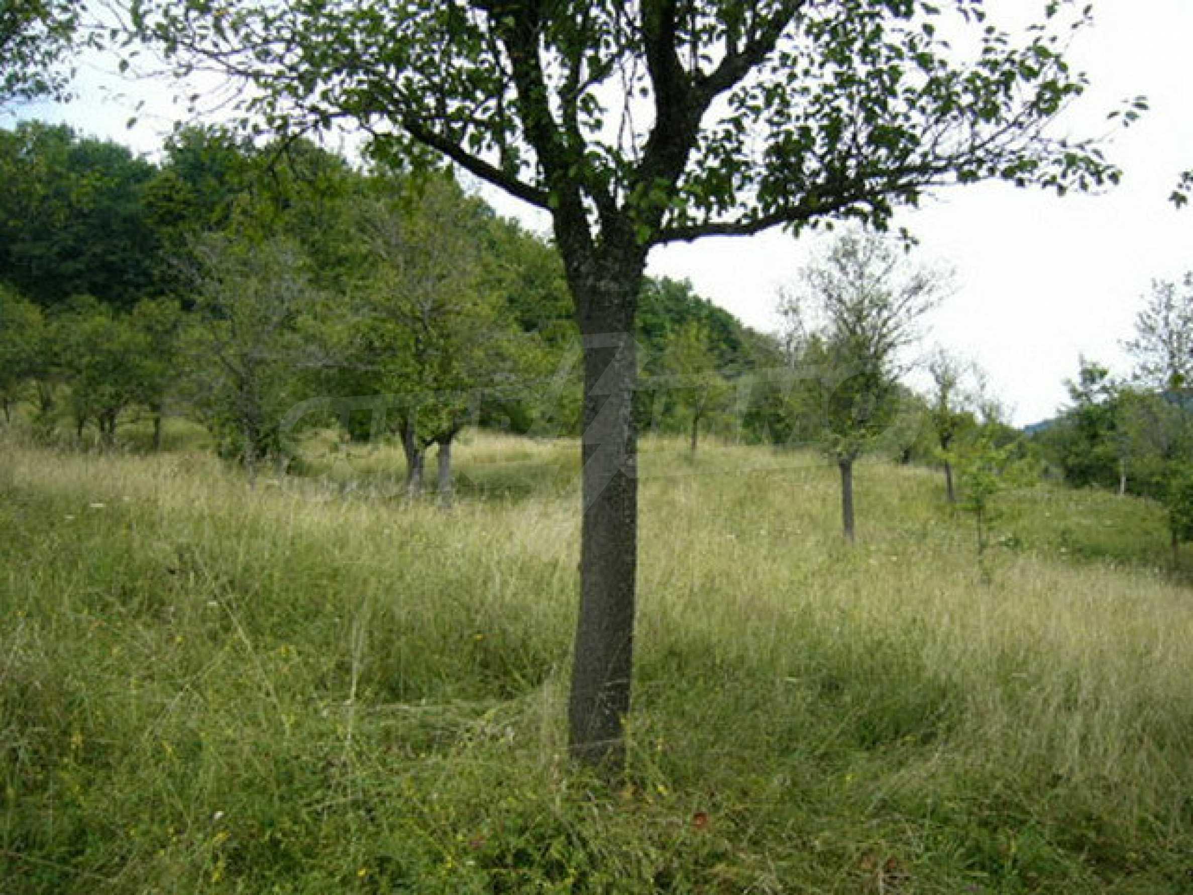 Reguliertes Anwesen in einem Dorf, das mit seinen Mineralquellen beliebt ist 8
