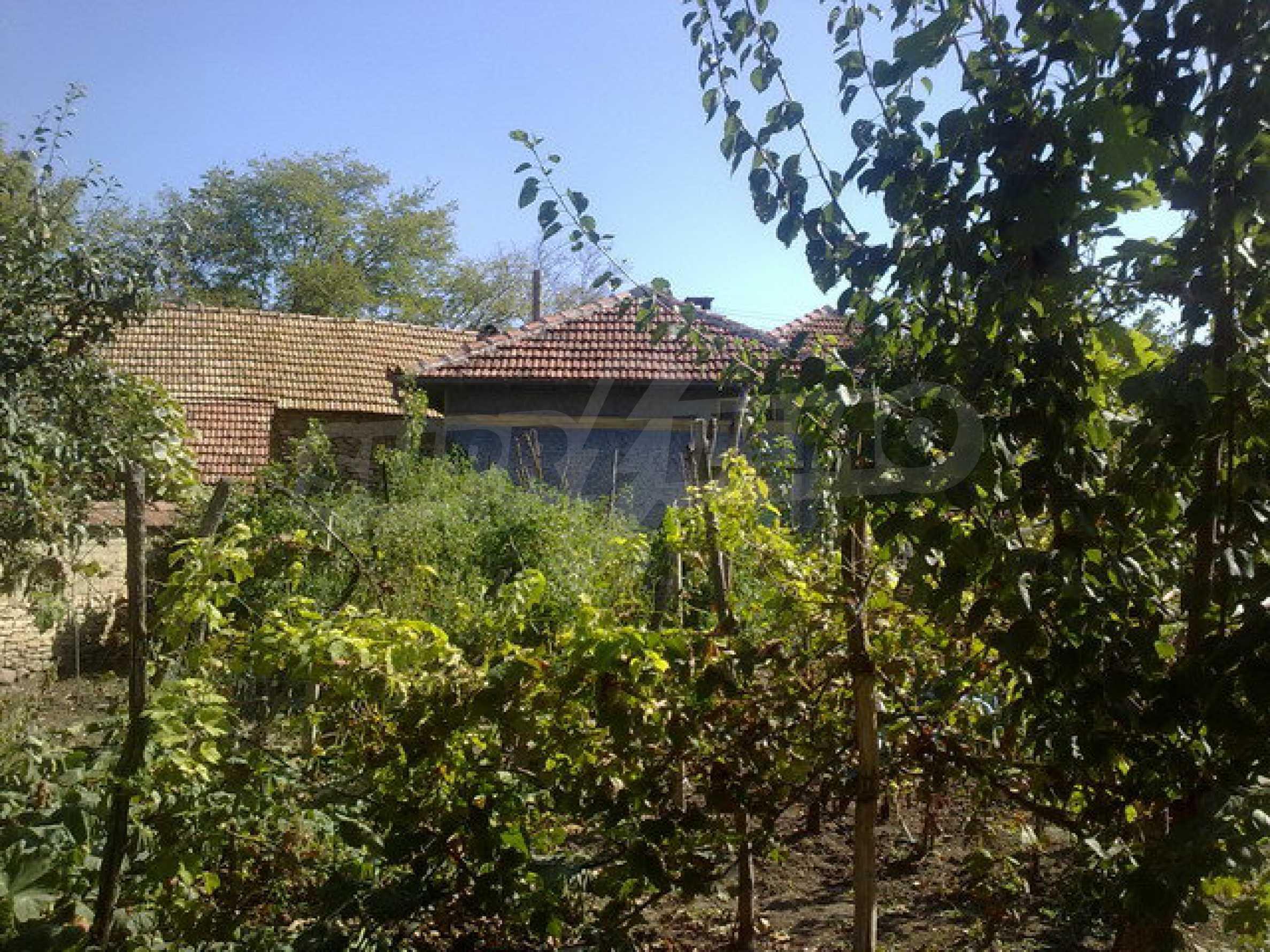 Прекрасный дом в большой деревне 3