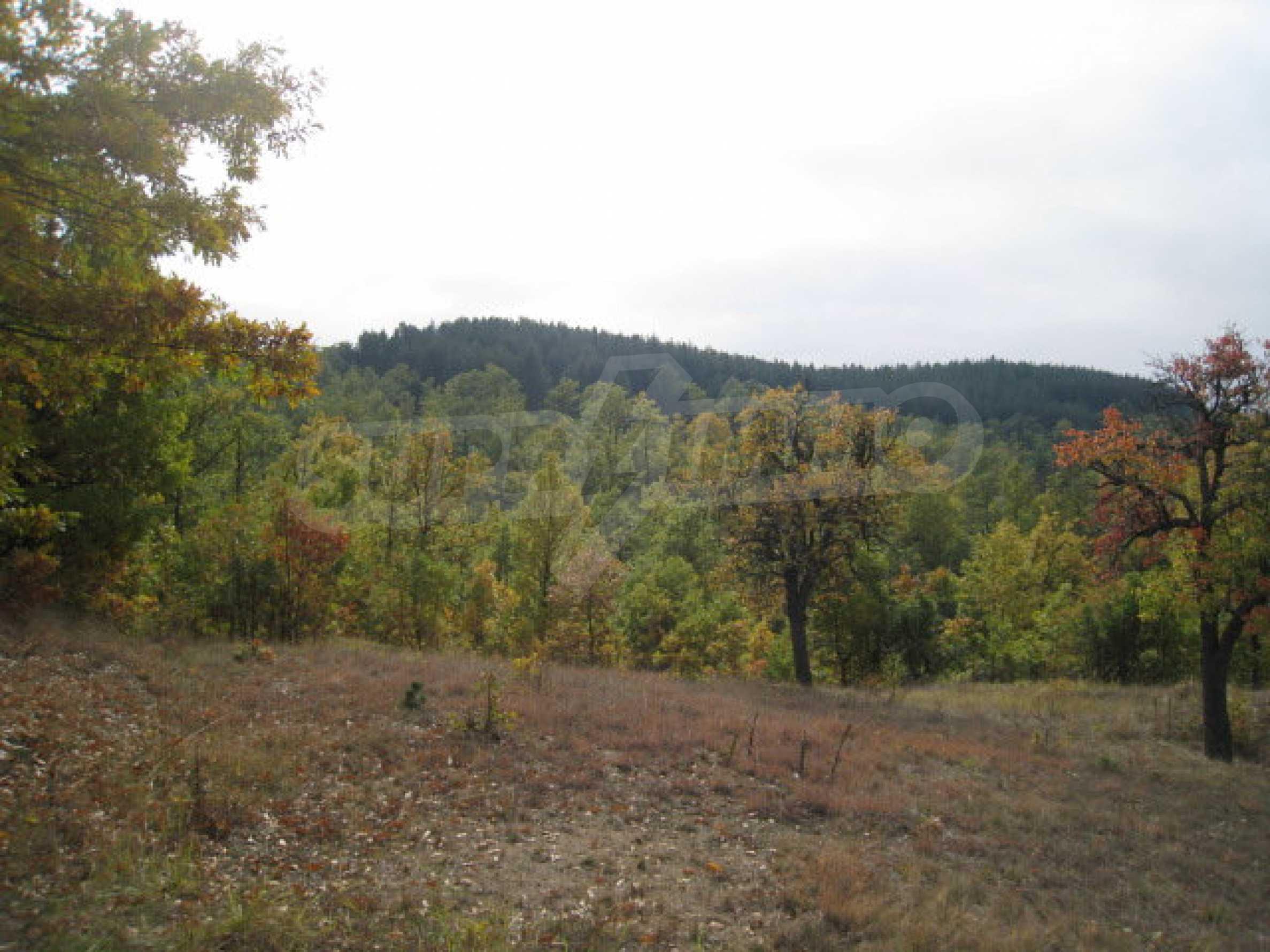 Development land near the town of Kostenets 14