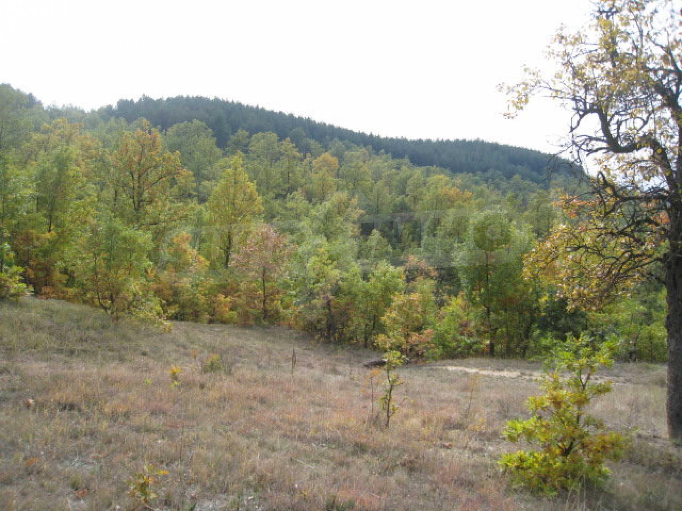 Development land near the town of Kostenets 4