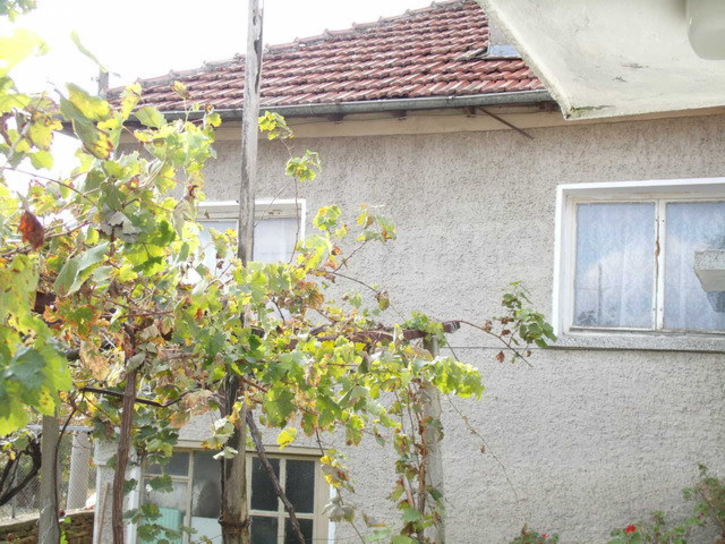 House in a small town, 15 km. from the old capital of Veliko Tarnovo 6