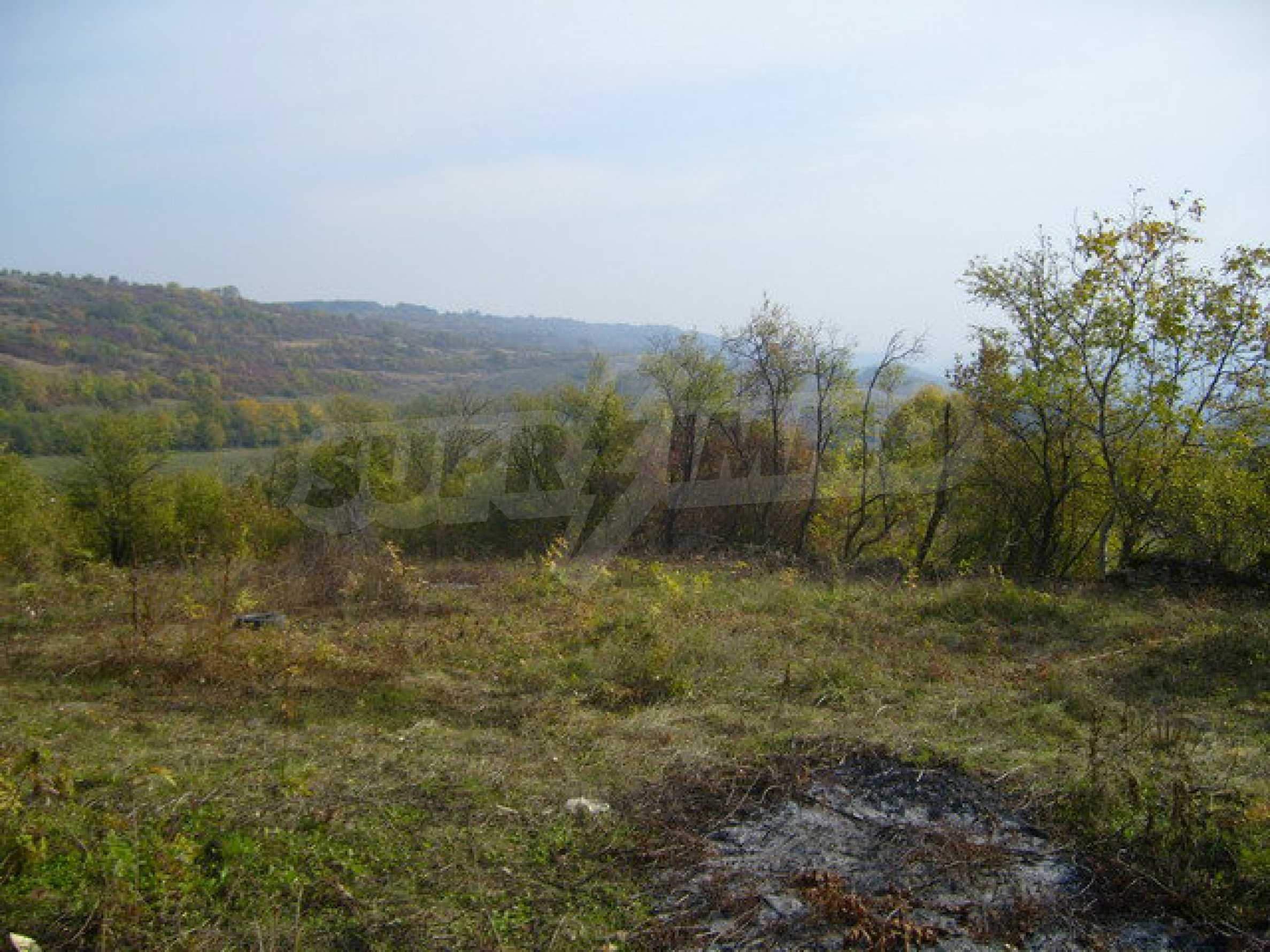 Regulated plot of land in a village with beautiful scenery  2