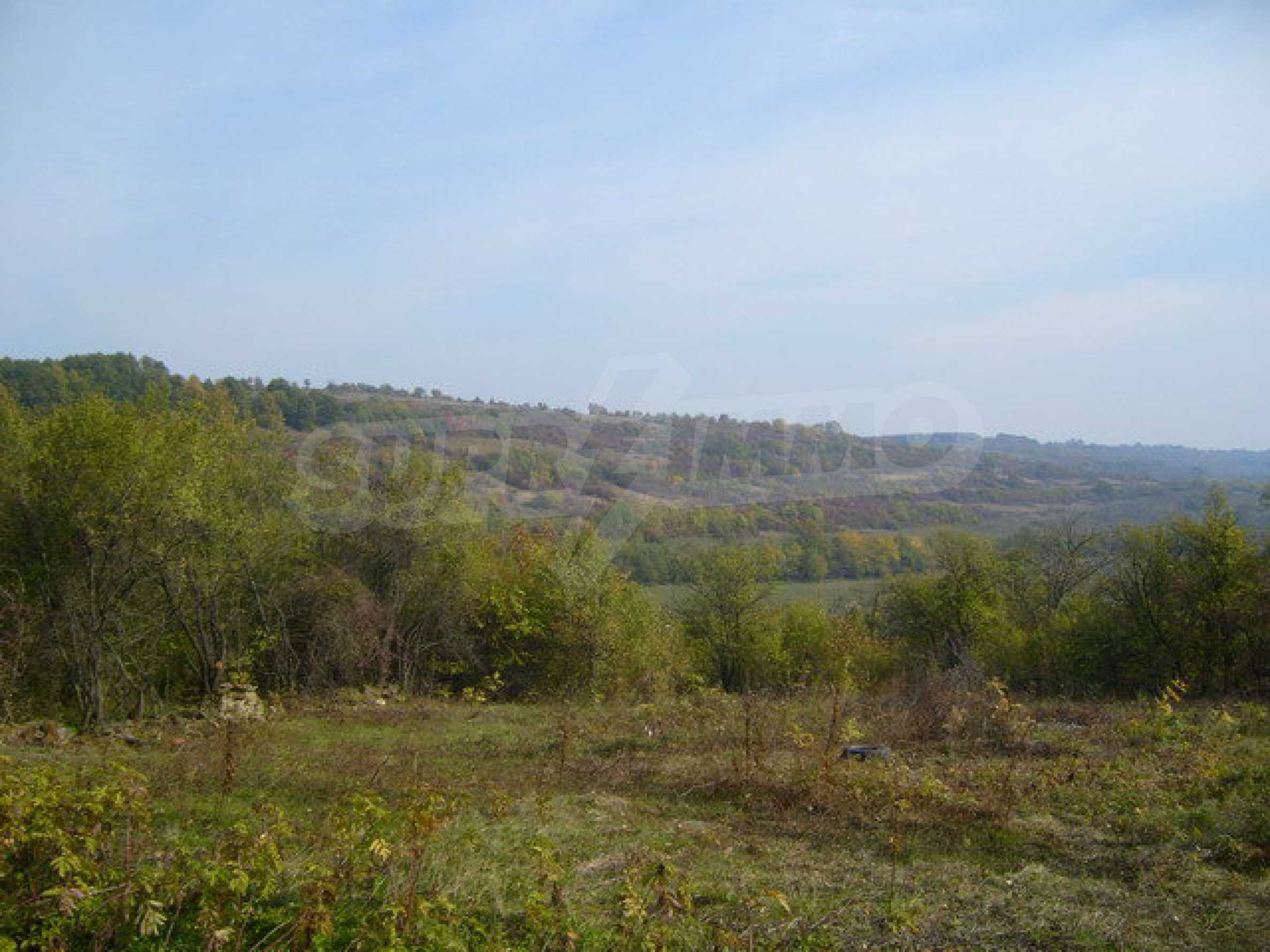 Regulated plot of land in a village with beautiful scenery  3