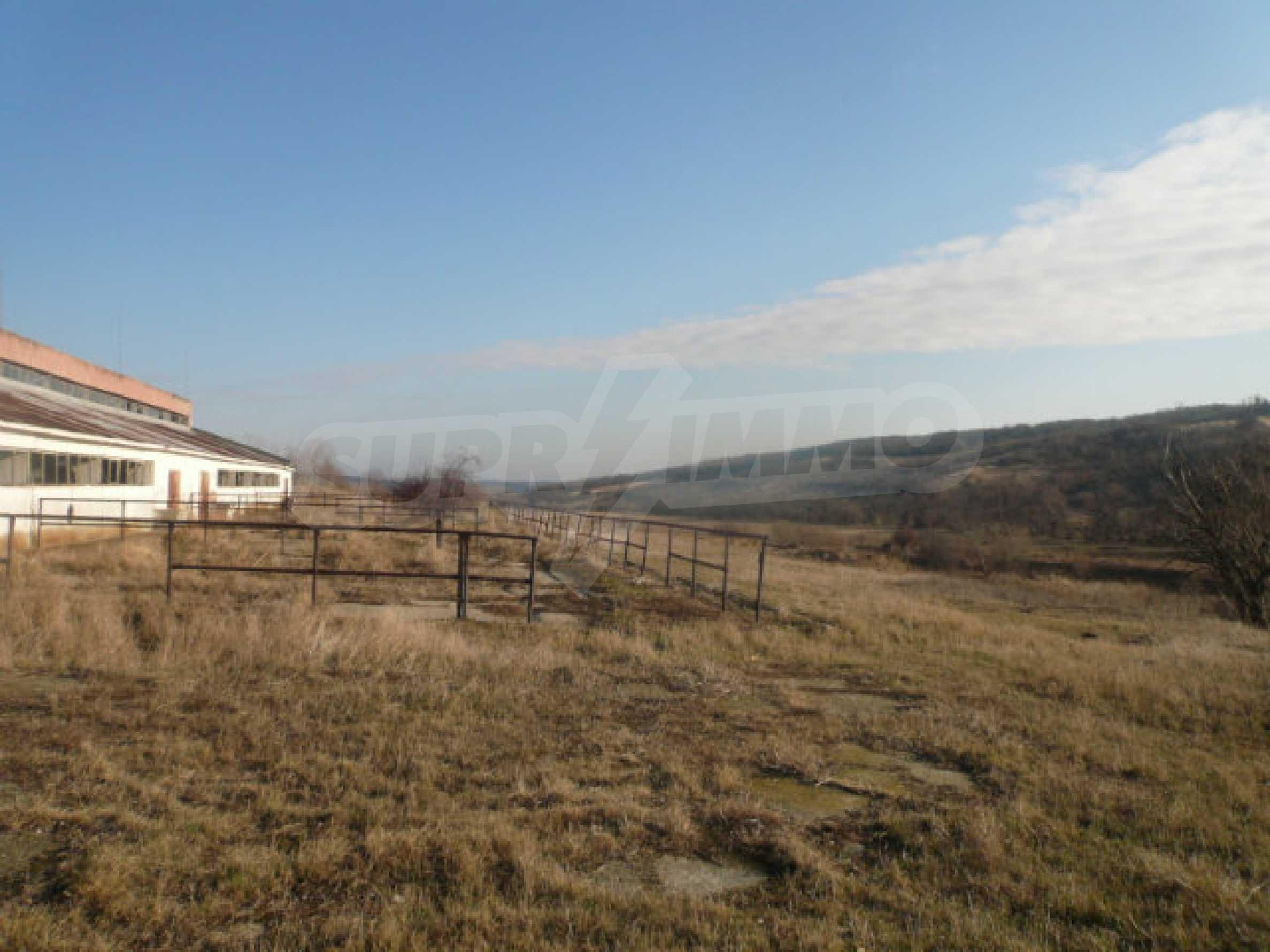 Guter Zustand Rinderfarm in der Nähe von Vidin 9