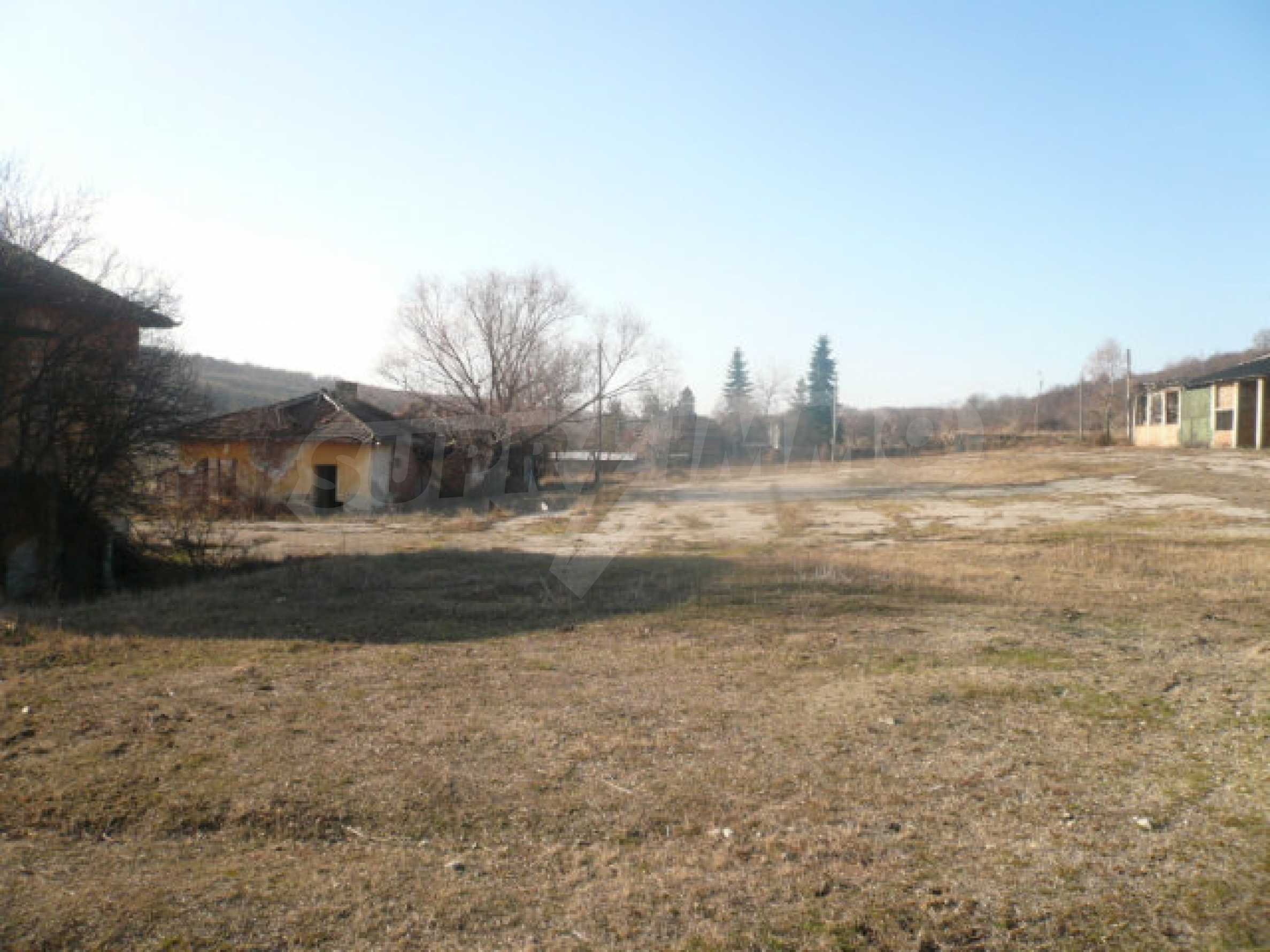 Guter Zustand Rinderfarm in der Nähe von Vidin 11