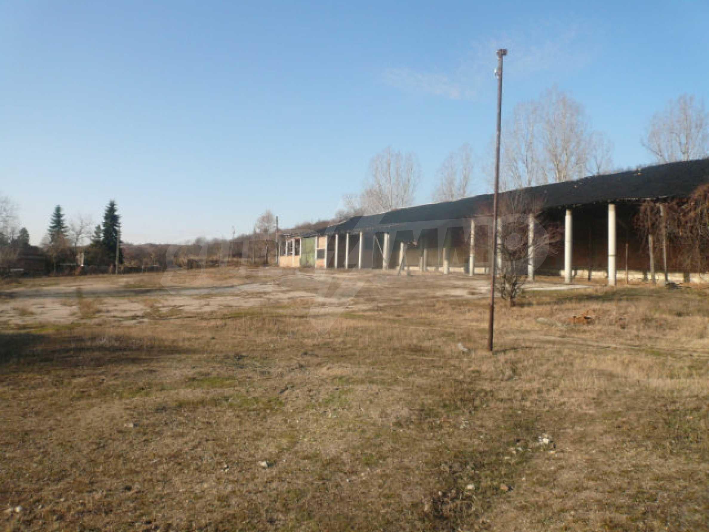 Guter Zustand Rinderfarm in der Nähe von Vidin 12