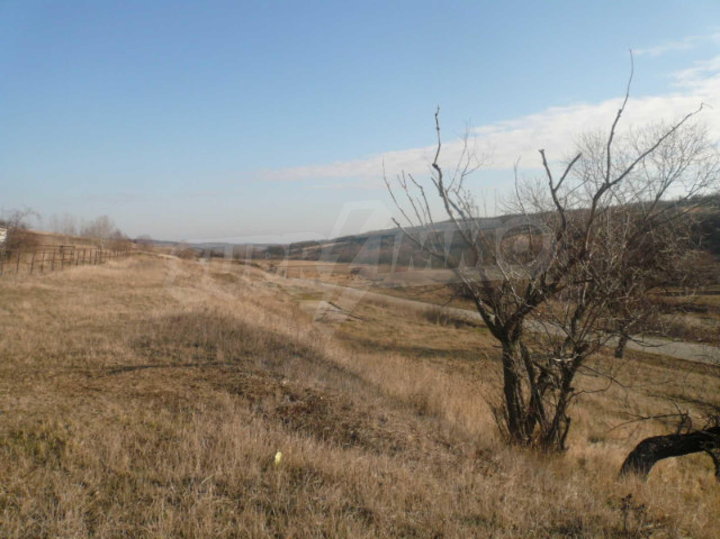 Guter Zustand Rinderfarm in der Nähe von Vidin 13