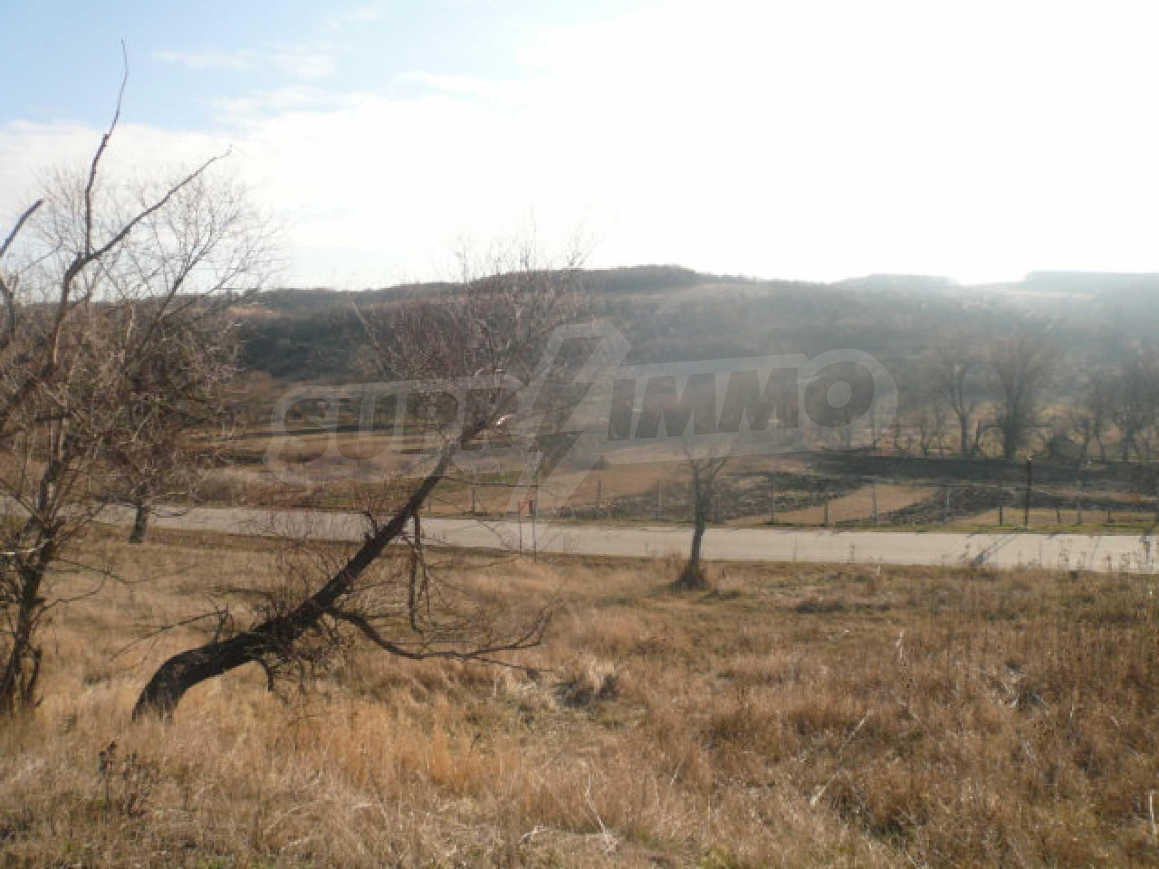 Guter Zustand Rinderfarm in der Nähe von Vidin 14