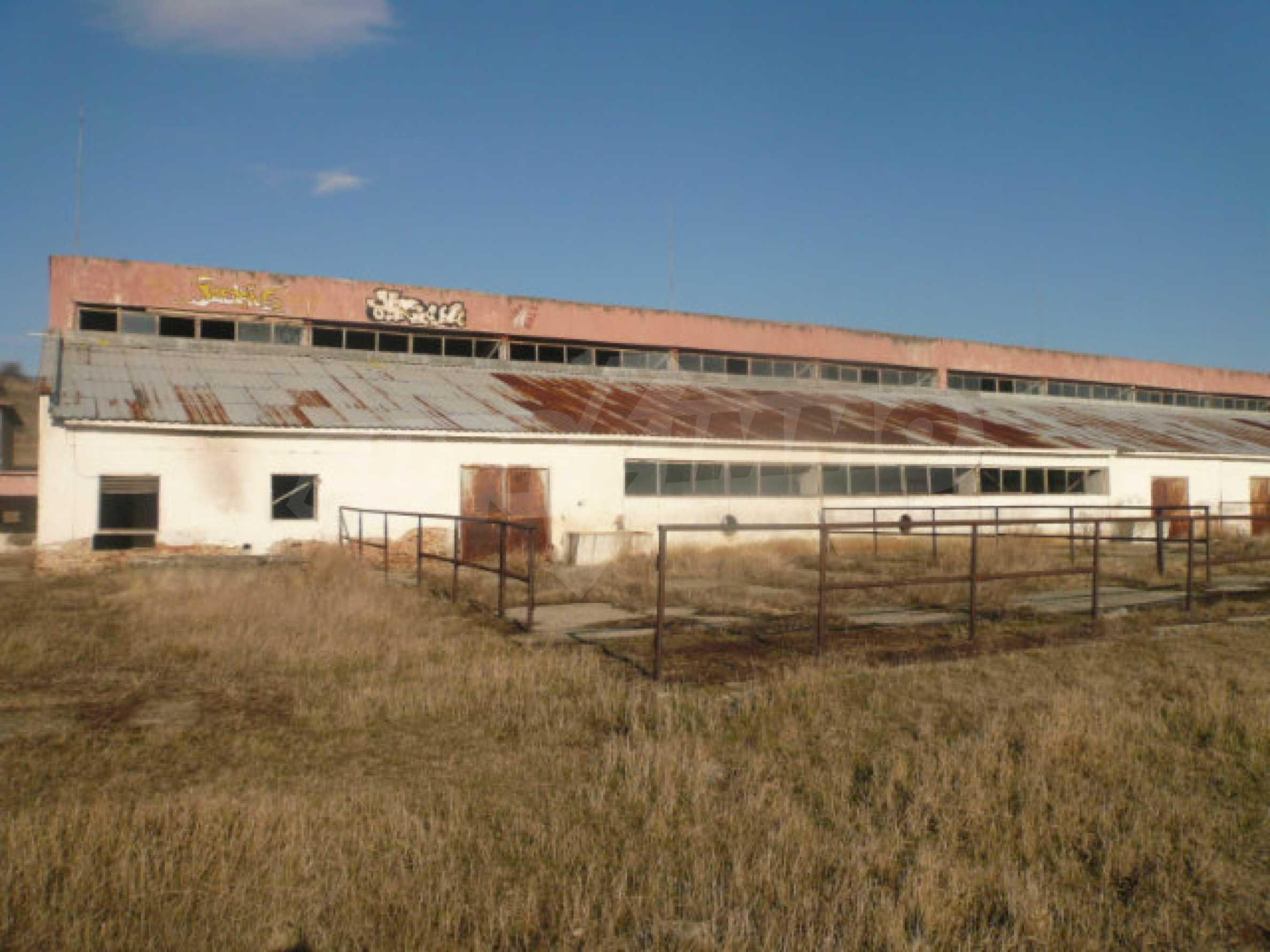 Guter Zustand Rinderfarm in der Nähe von Vidin 15