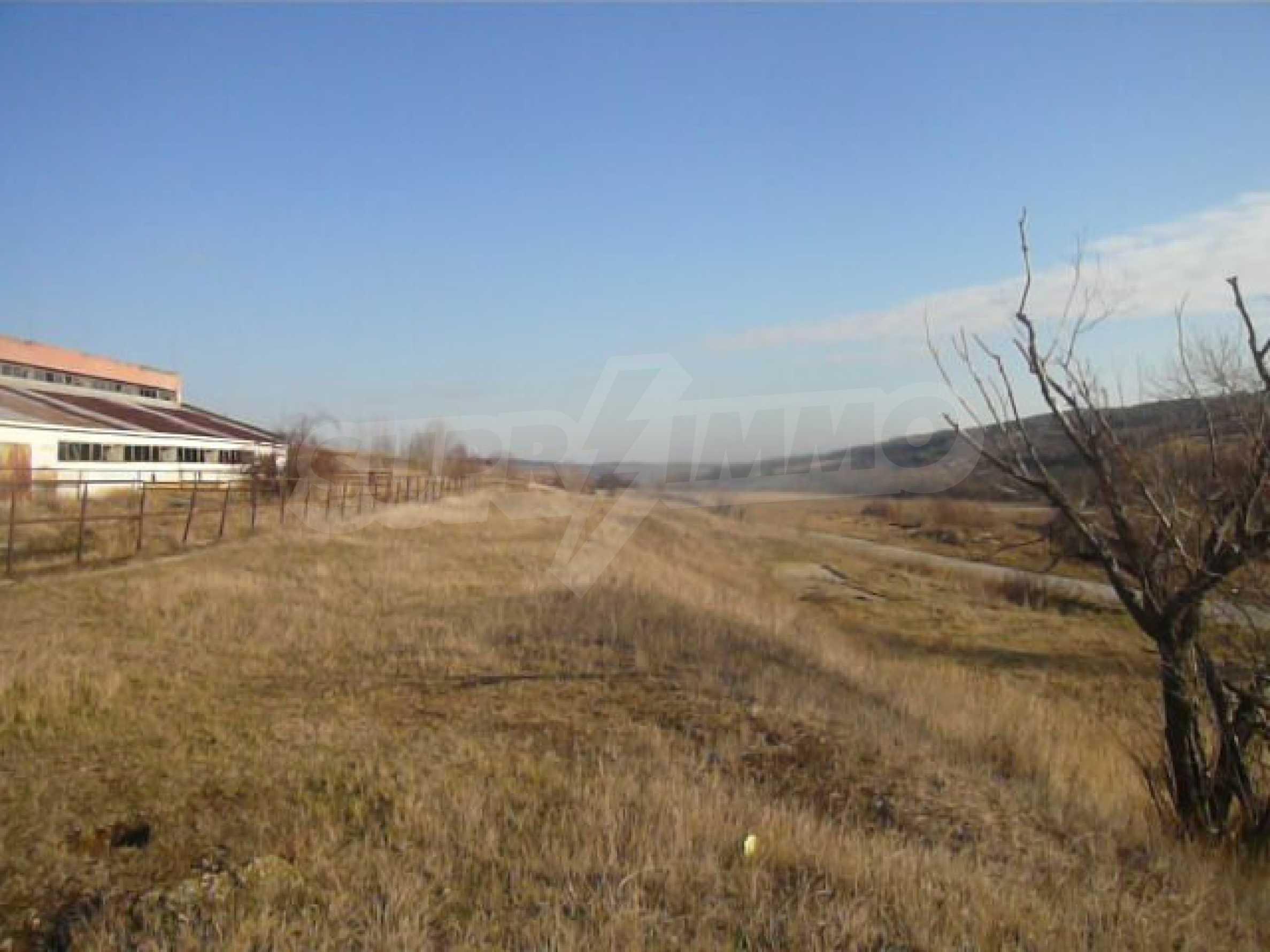 Guter Zustand Rinderfarm in der Nähe von Vidin 16