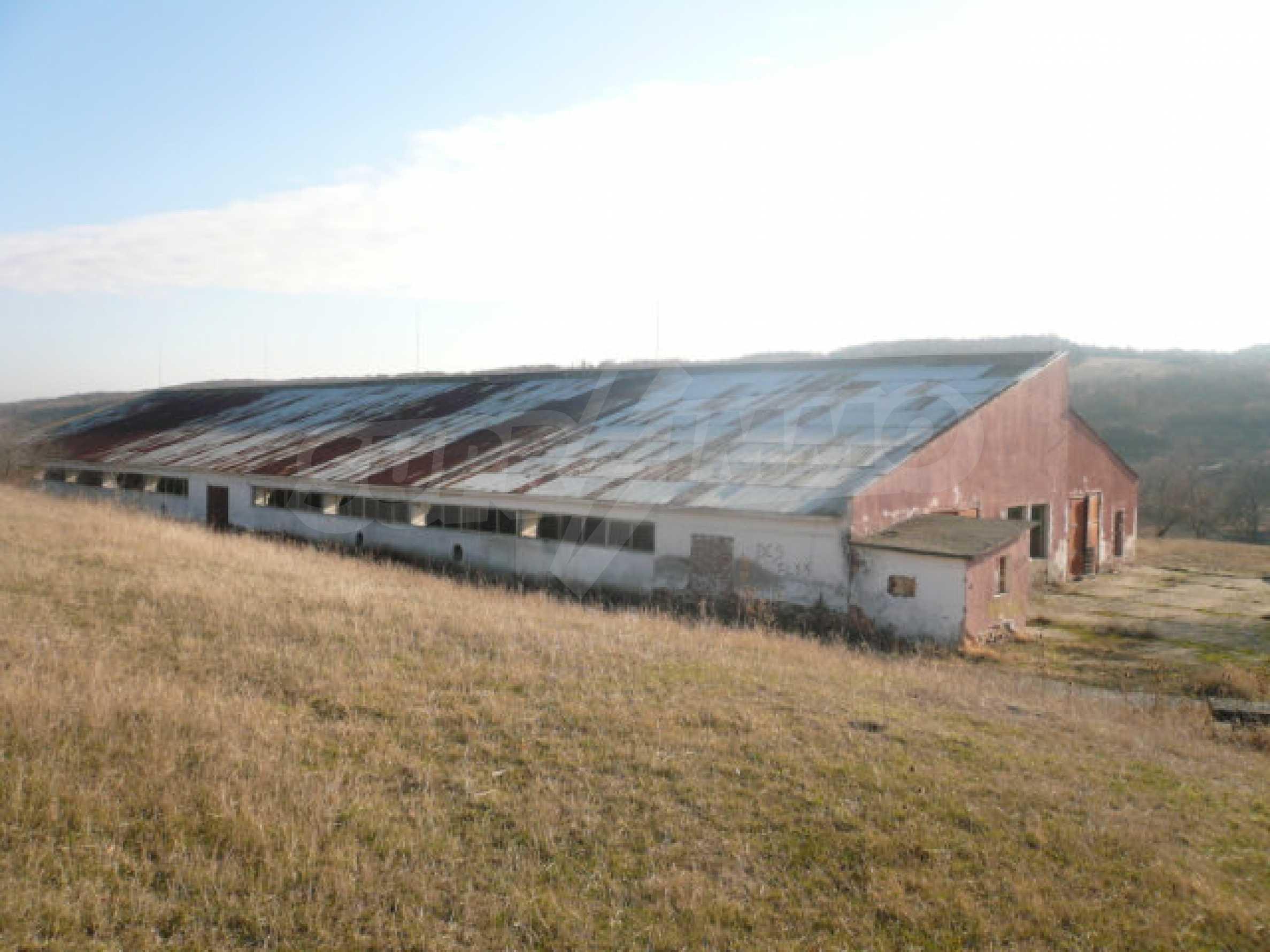 Guter Zustand Rinderfarm in der Nähe von Vidin 2
