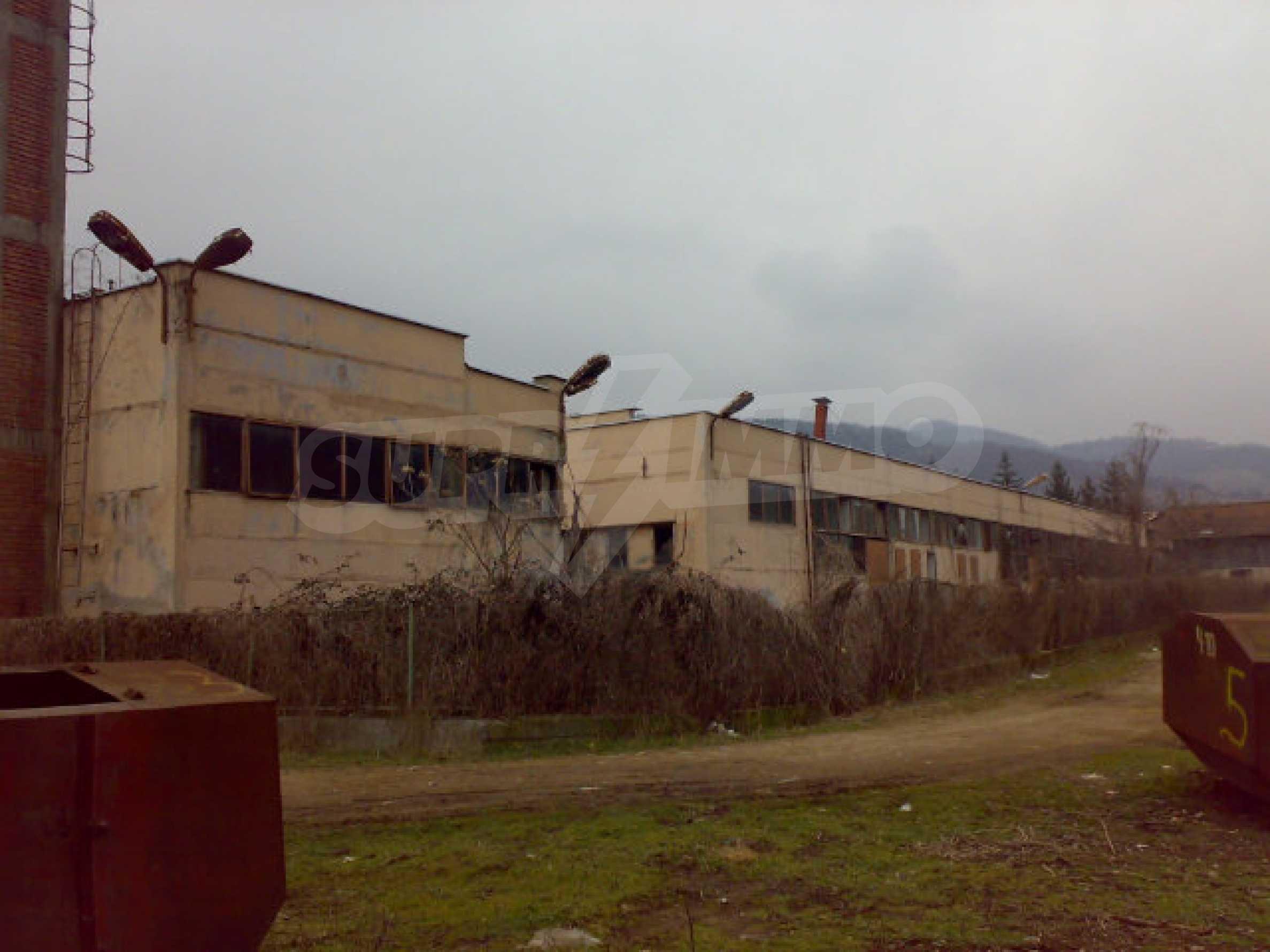 Завод возле города Видин 10