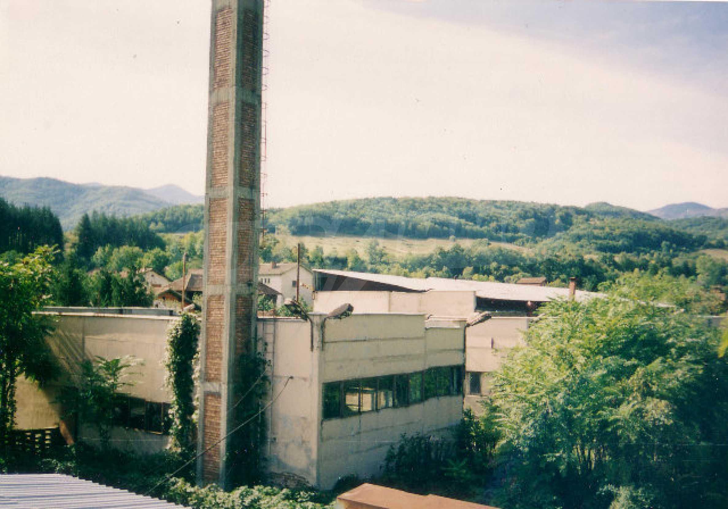Завод возле города Видин 2