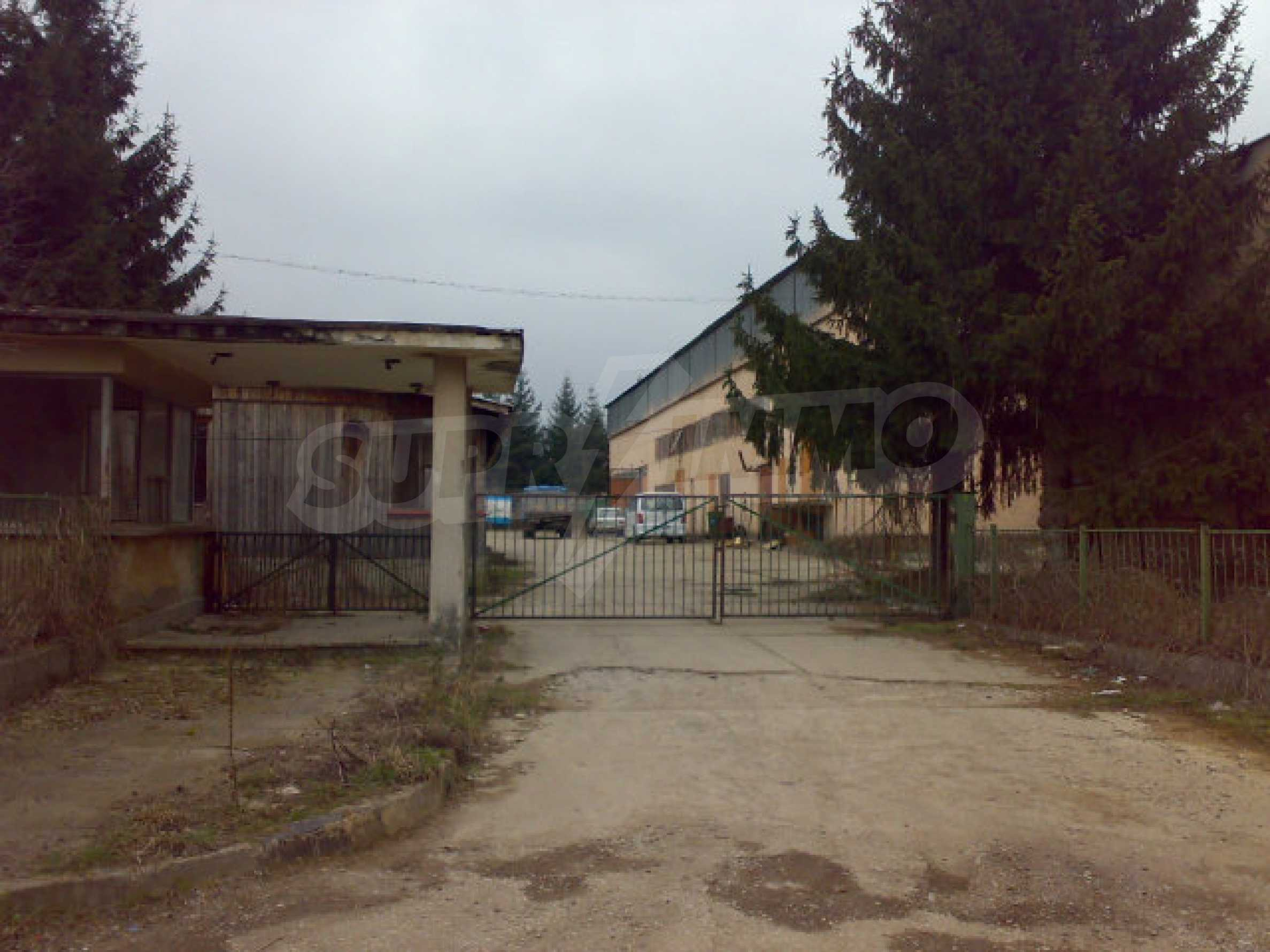 Завод возле города Видин 8