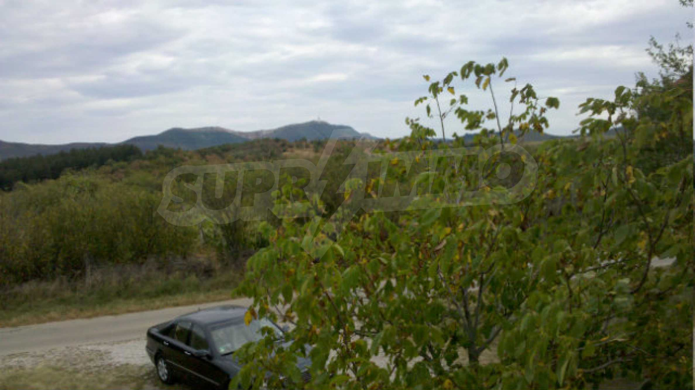 Plot of land 5 km from Belogradchik 20