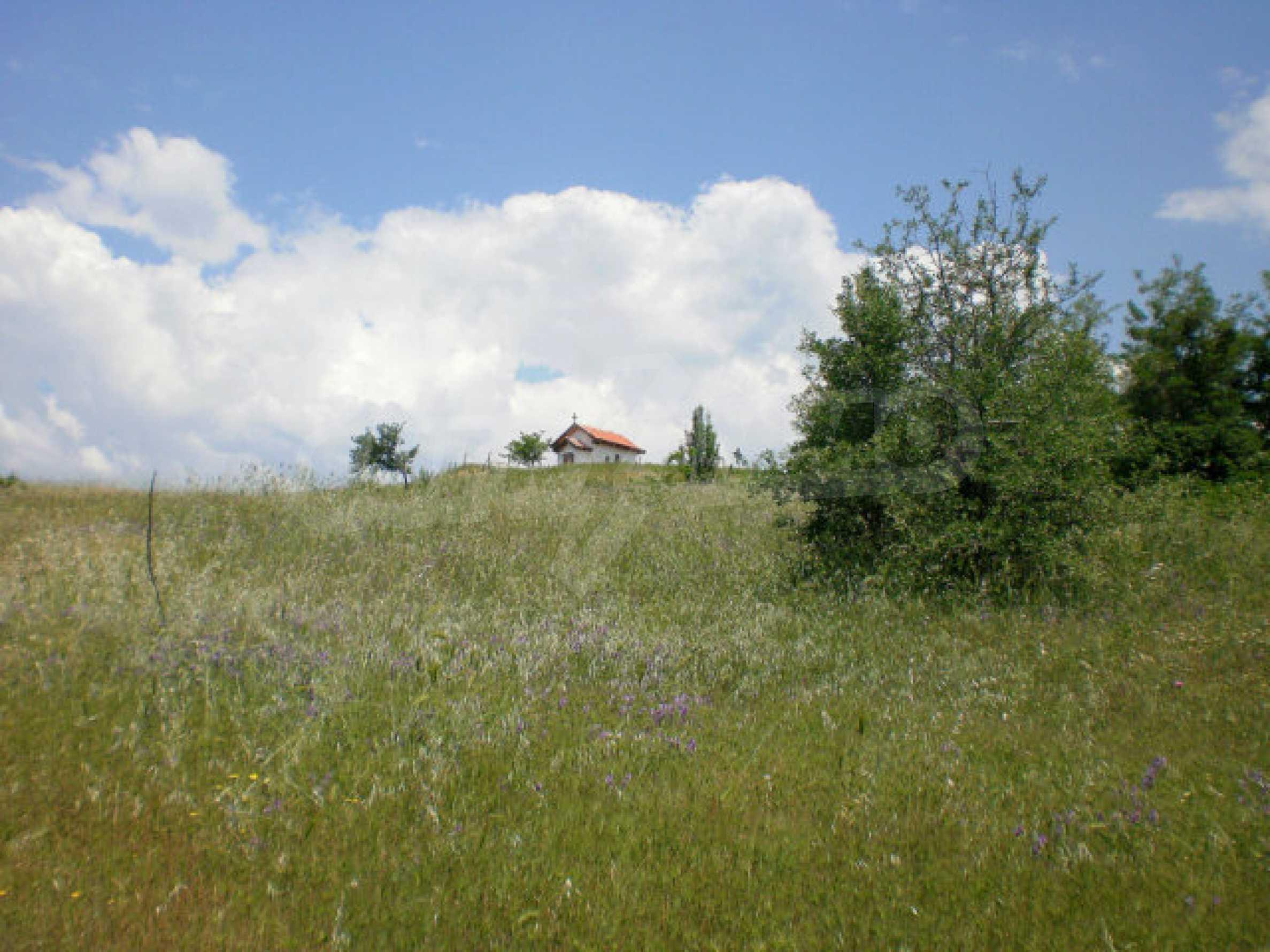 Agricultural land for sale near Sandanski 4