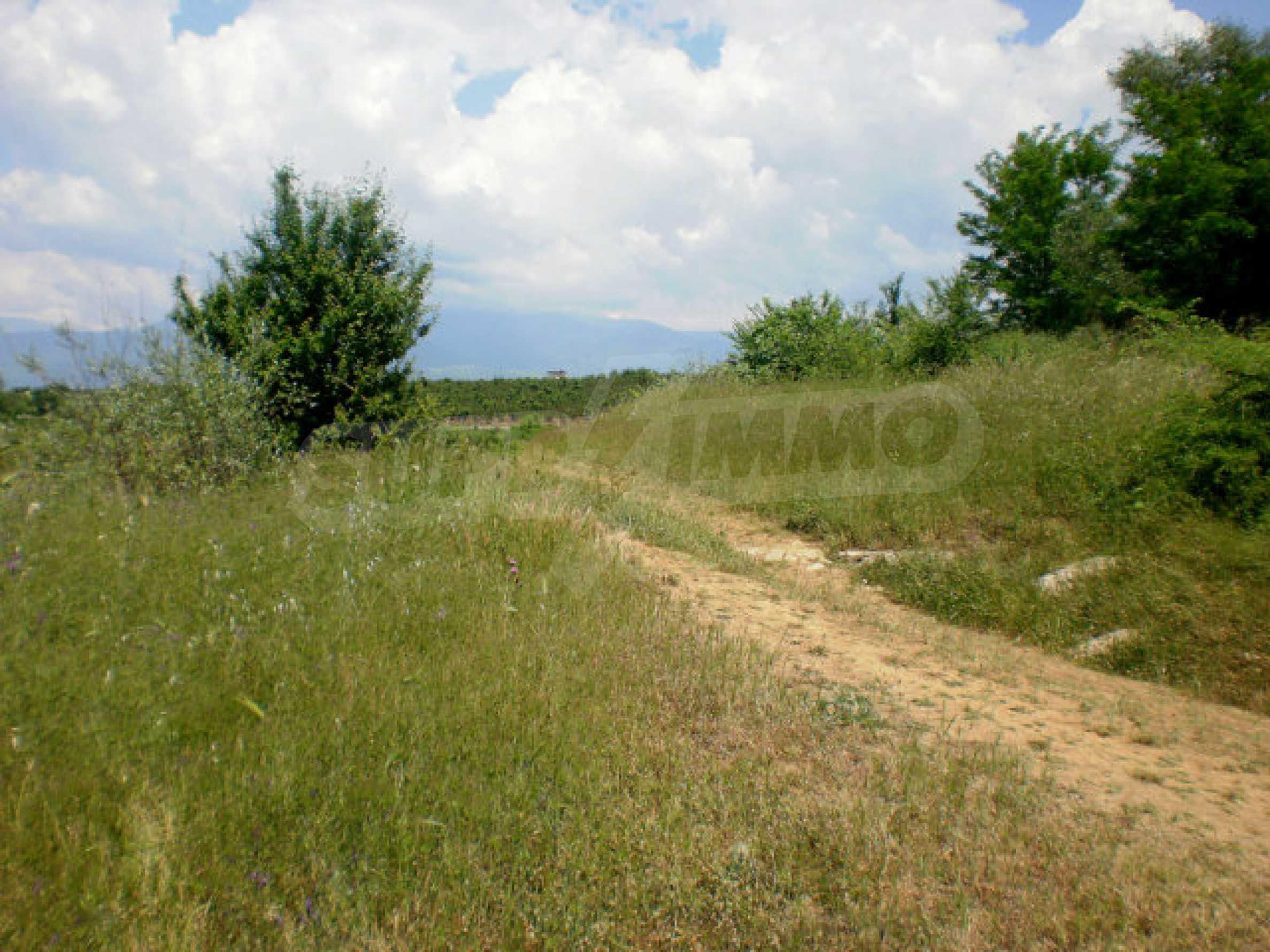 Agricultural land for sale near Sandanski 5