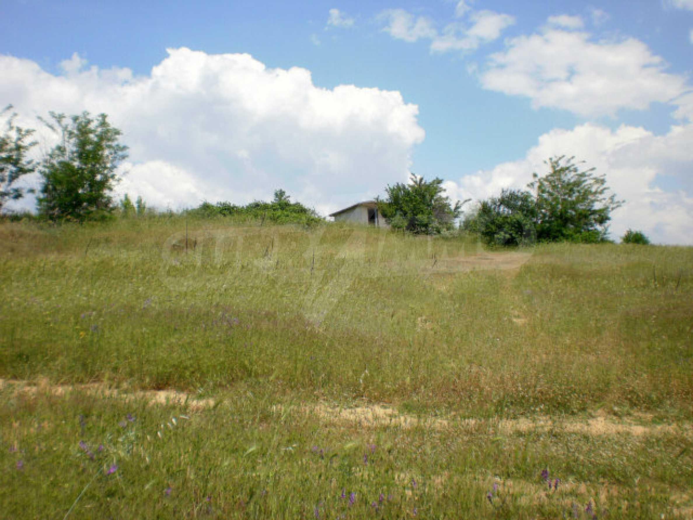 Agricultural land for sale near Sandanski 6