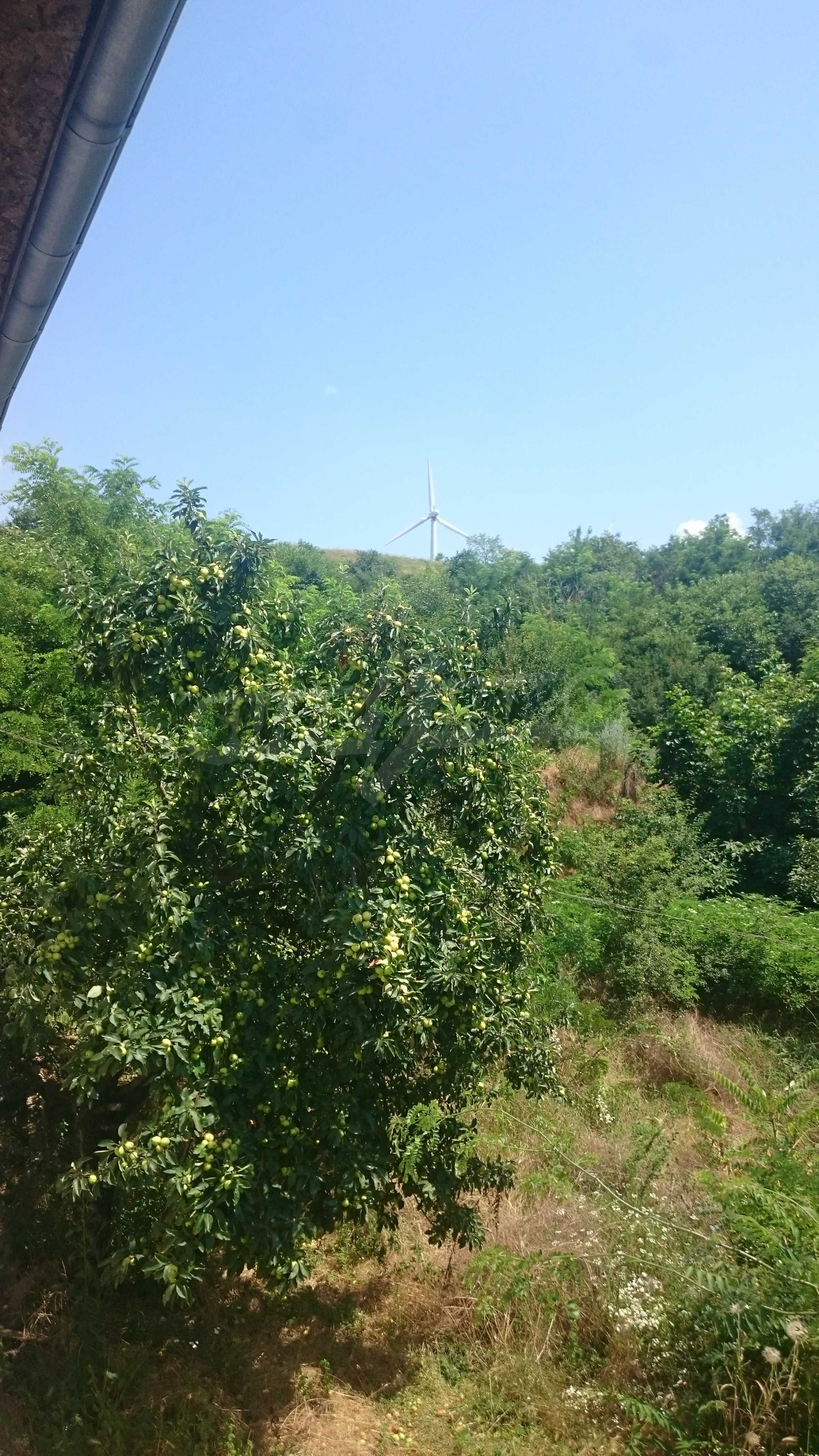 Fully renovated house with large garden and views of the Danube 49