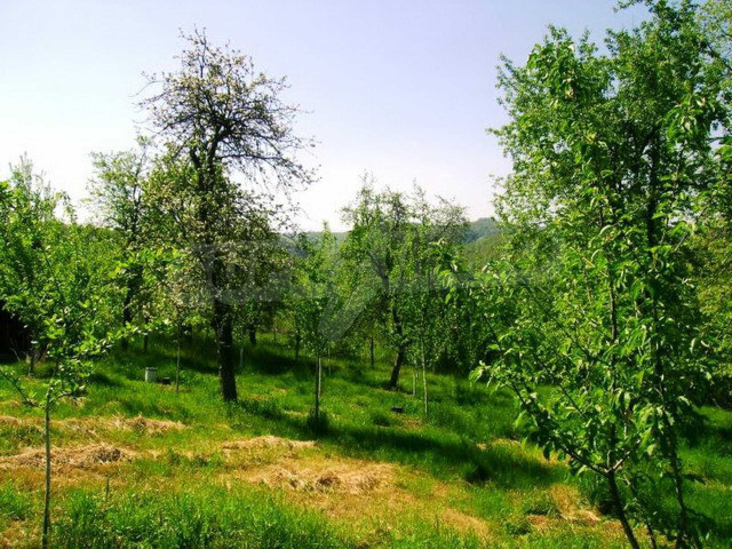 Haus mit Garten in Troyan Balkan 6
