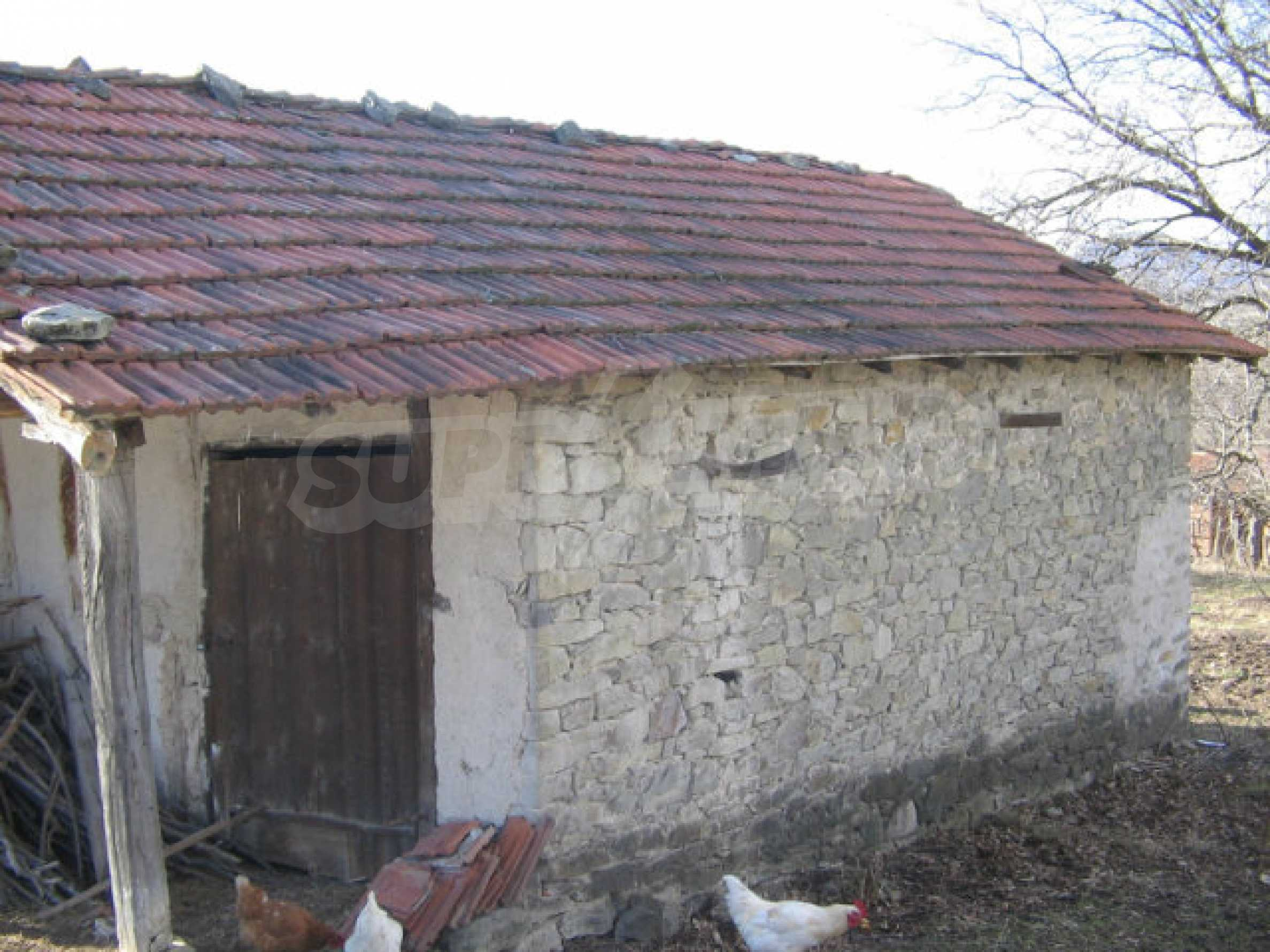 Plot for sale in village 32 km from Kardzhali 3
