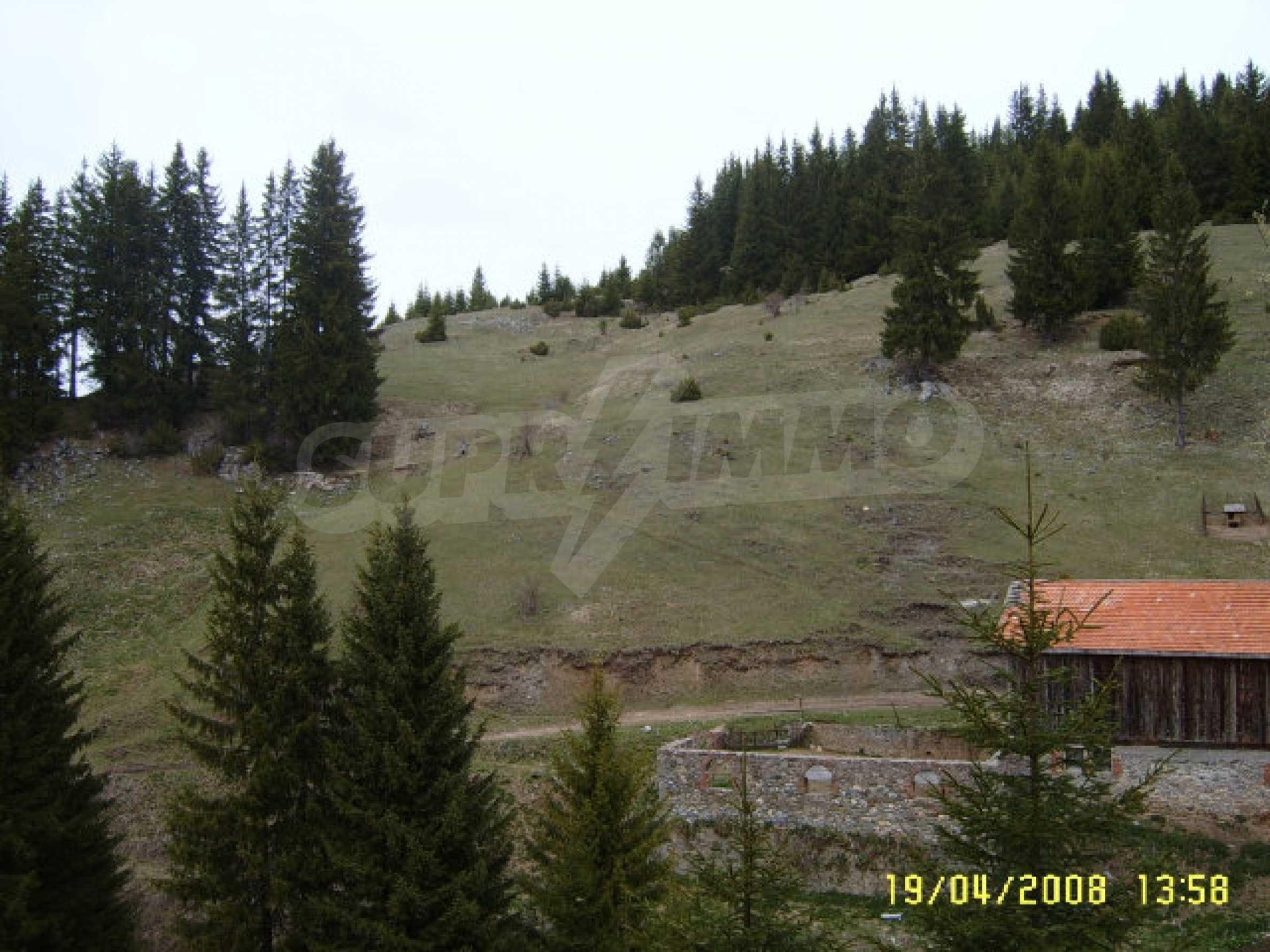 Land near Pamporovo 1