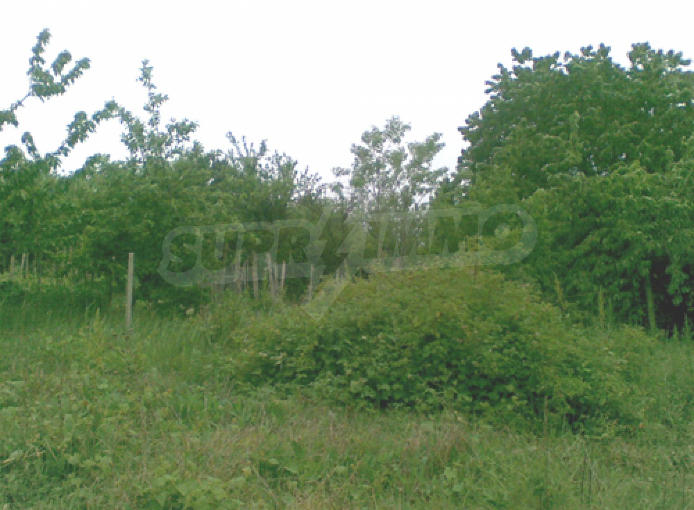 Grundstück im Bezirk Perchemliata