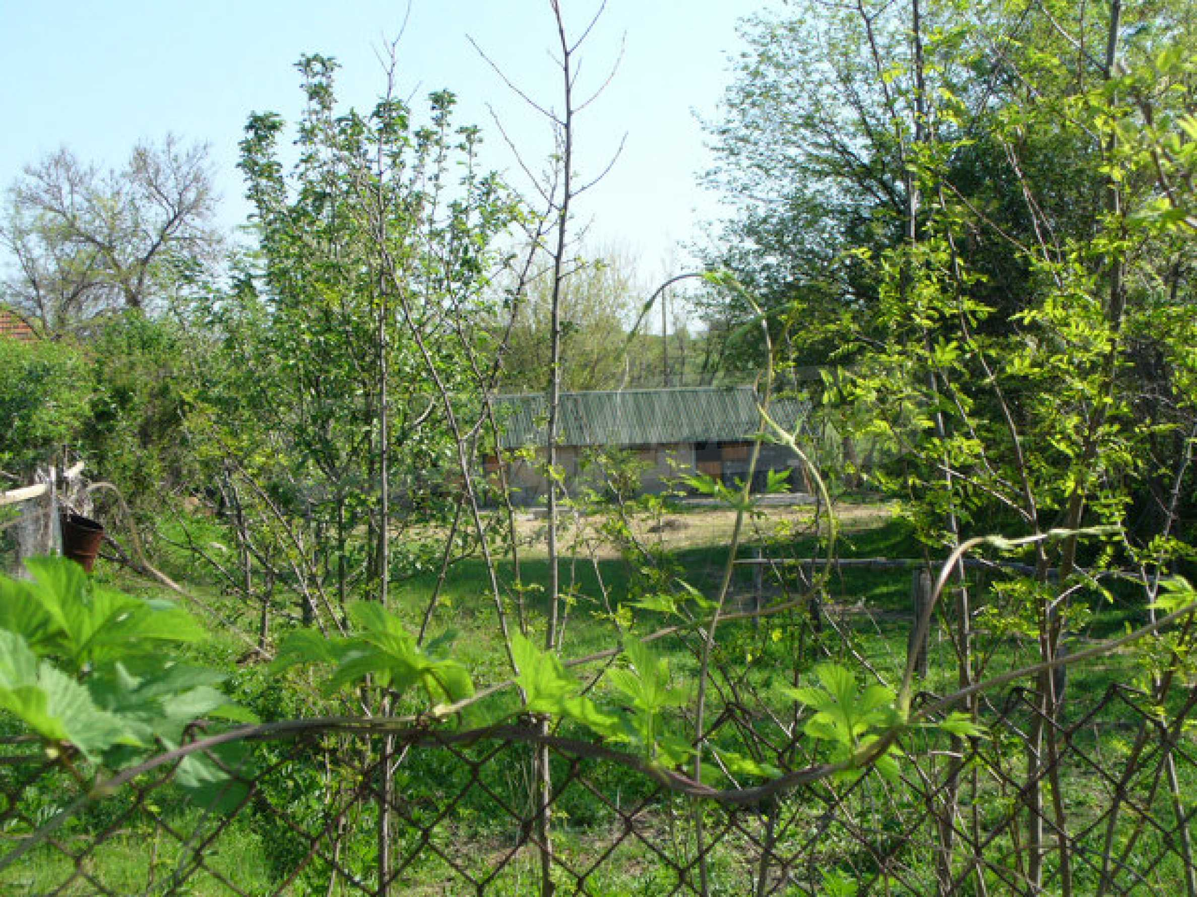 Solides Haus in sehr gutem Zustand, 30 km von Vidin 9