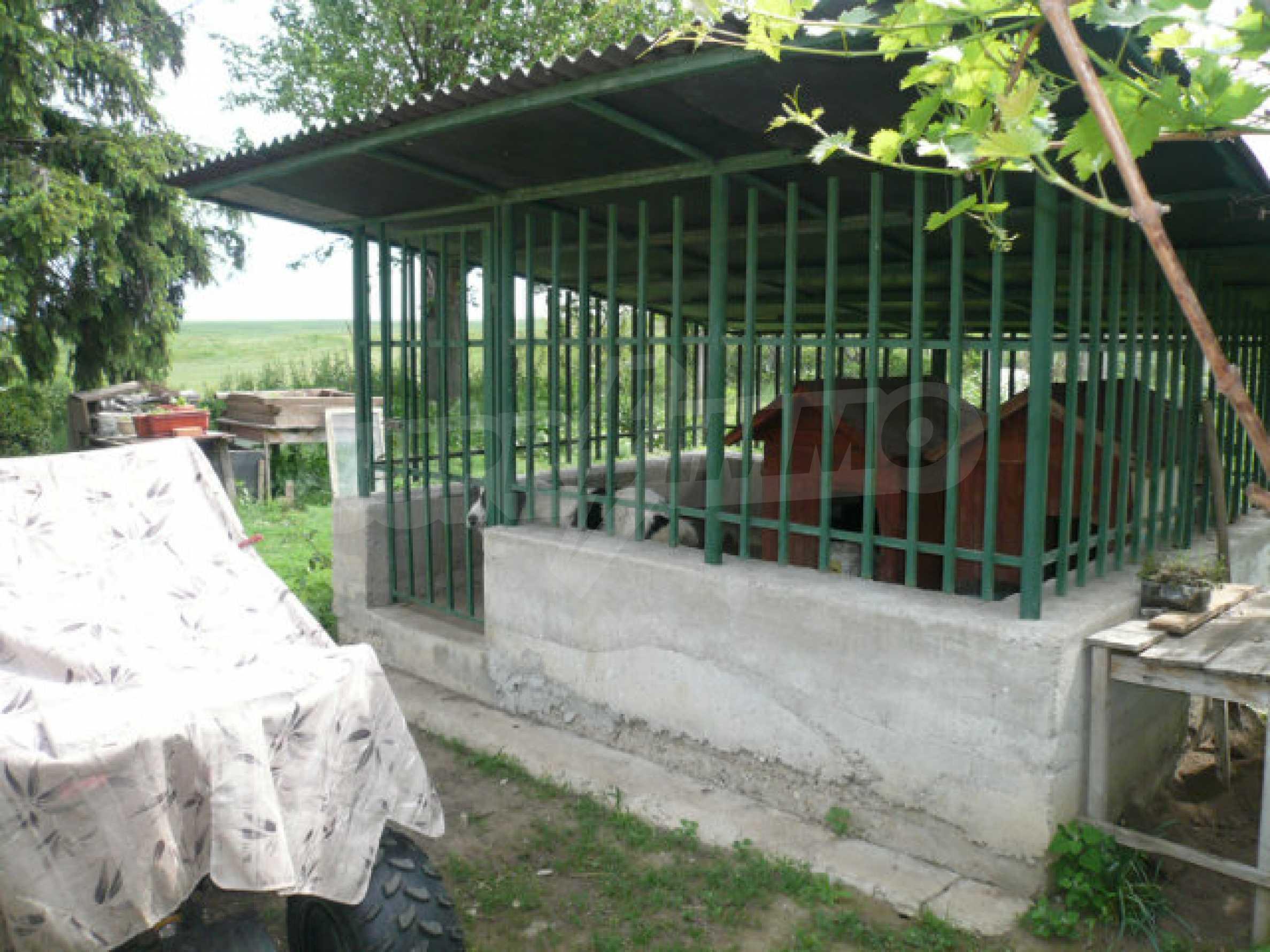 Solides Haus in sehr gutem Zustand, 30 km von Vidin 16