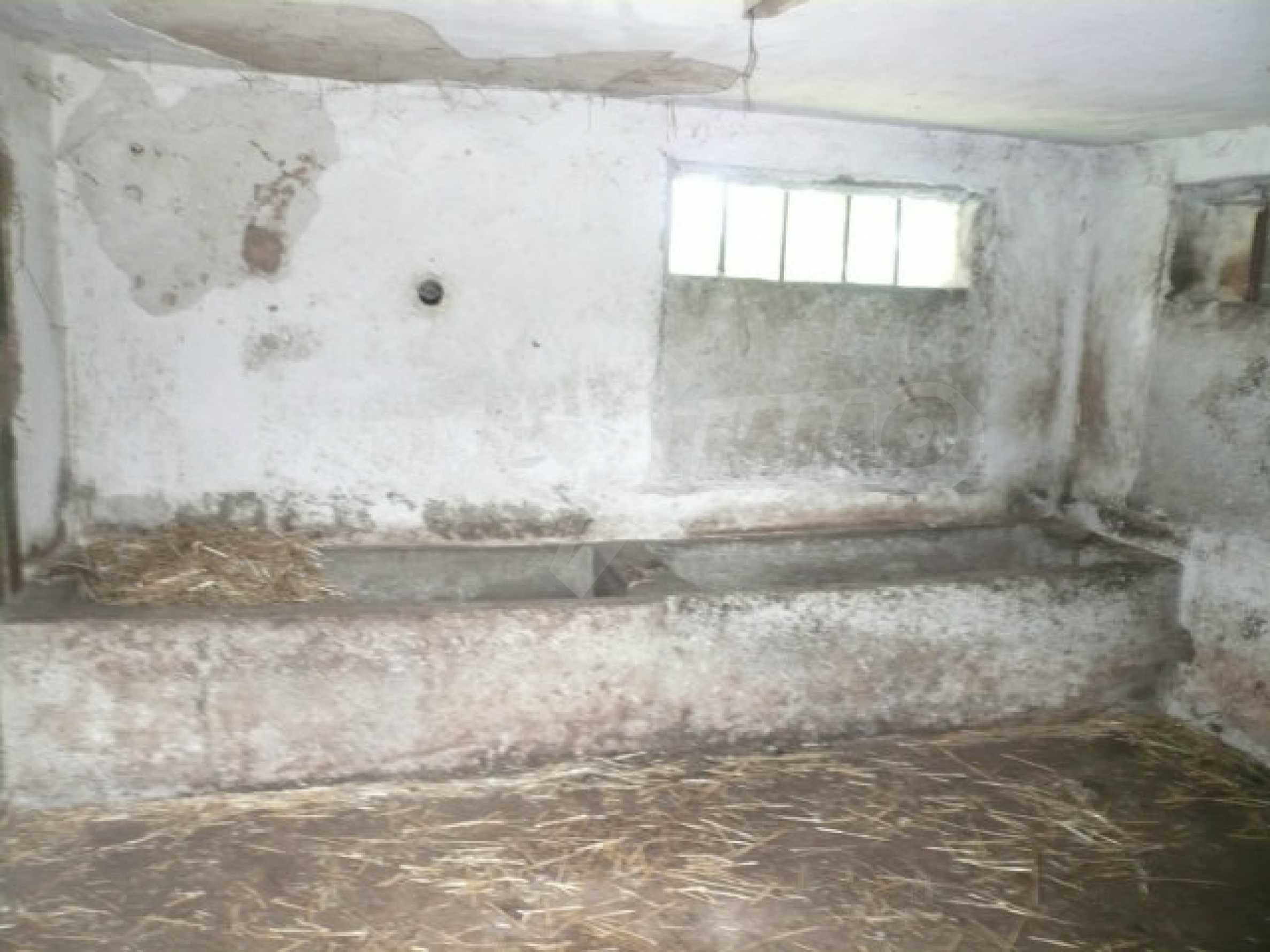 Solides Haus in sehr gutem Zustand, 30 km von Vidin 31