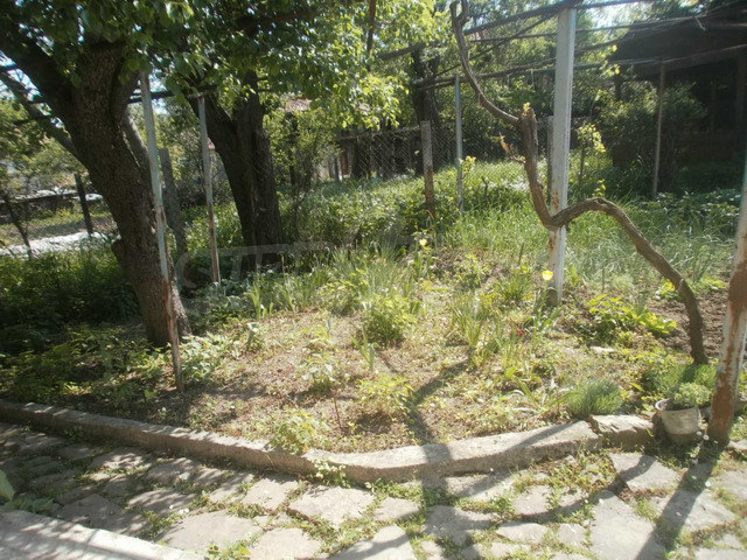 Reihenhaus mit Hof am Flussufer in Elena 16