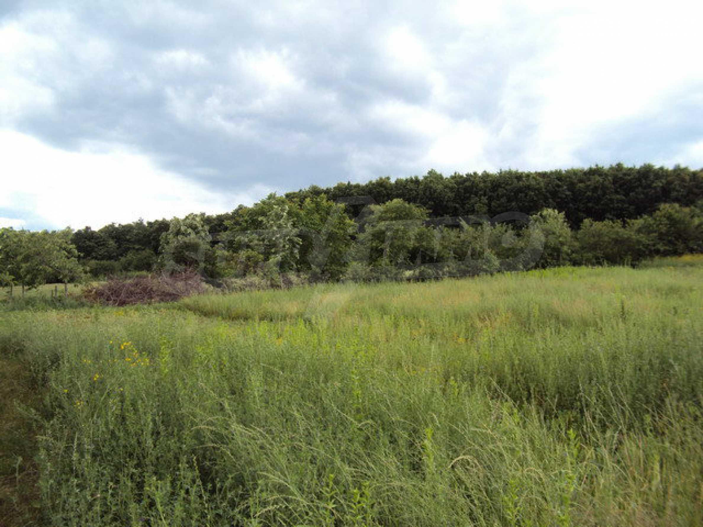 Zweistöckiges Landhaus mit Garten 50 km. von der alten Hauptstadt Veliko Tarnovo 15