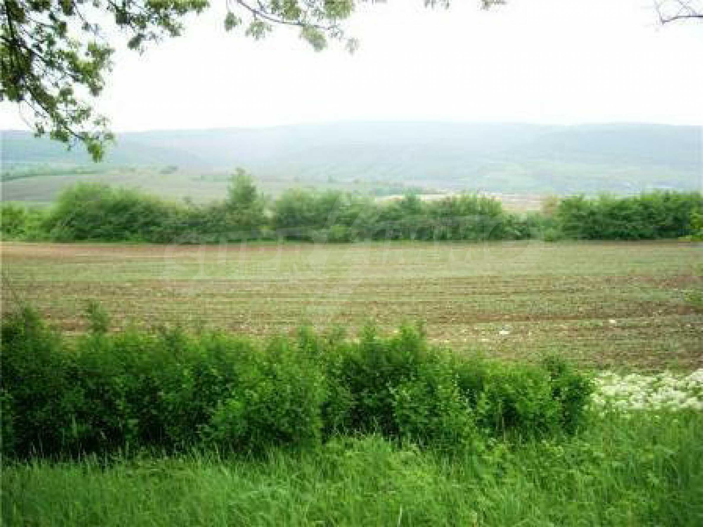 Ein Grundstück mit landwirtschaftlichem Status, 100 Meter von der Autobahn Sofia-Varna entfernt.